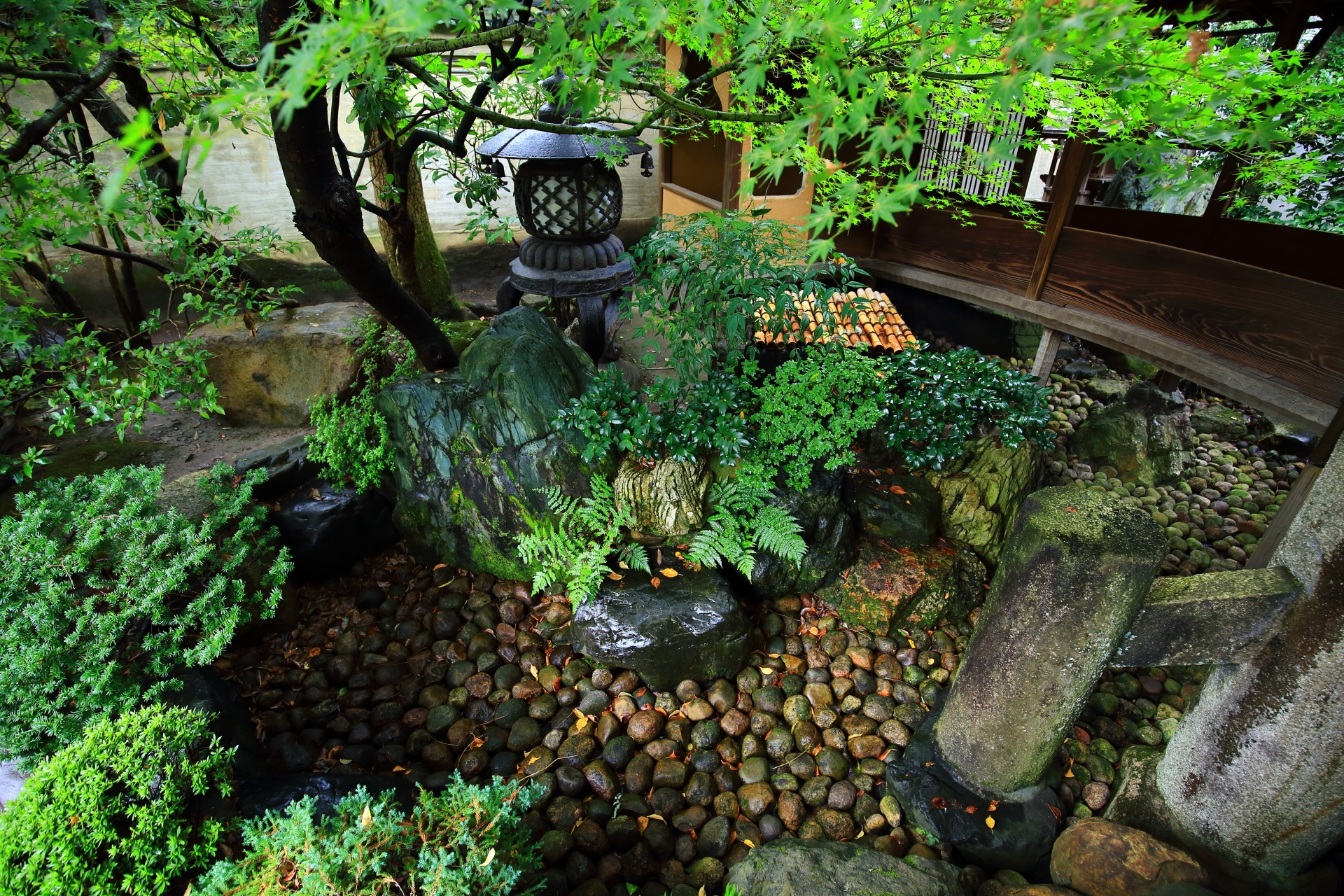 角屋の臥龍松の庭の西側の枯山水