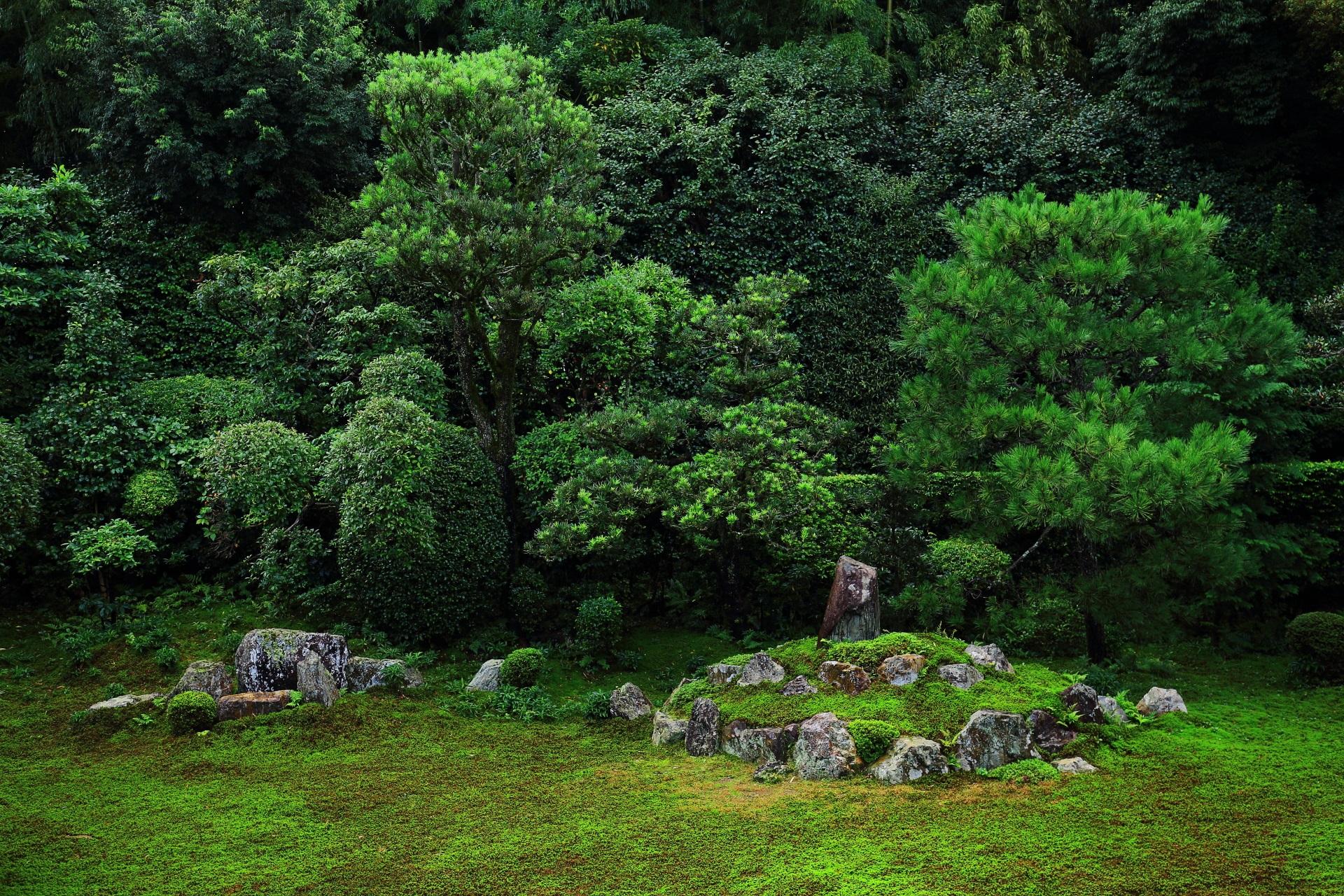 多種多様な緑の植えられた鶴亀の庭