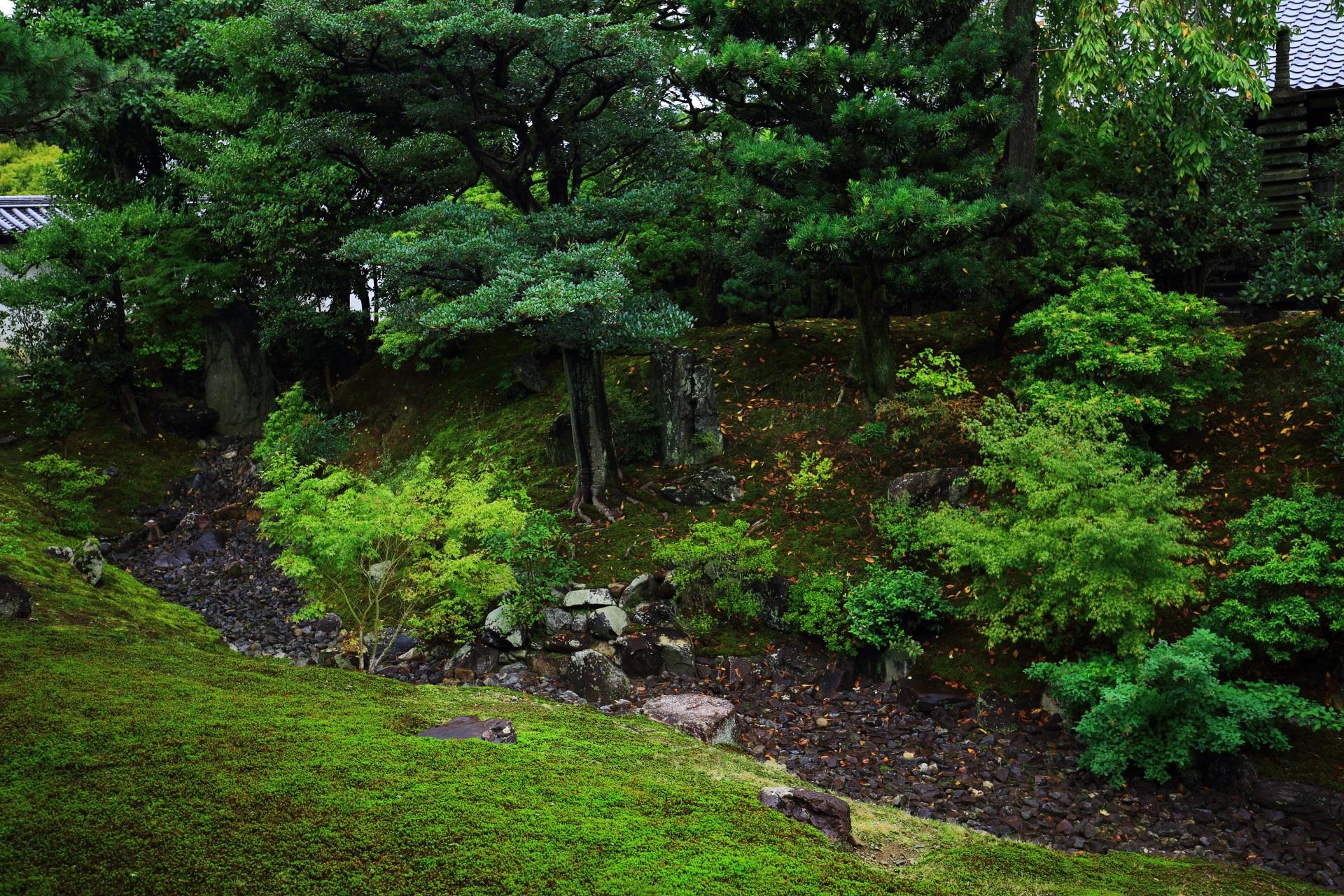 枯流が造られた相国寺の裏方丈庭園