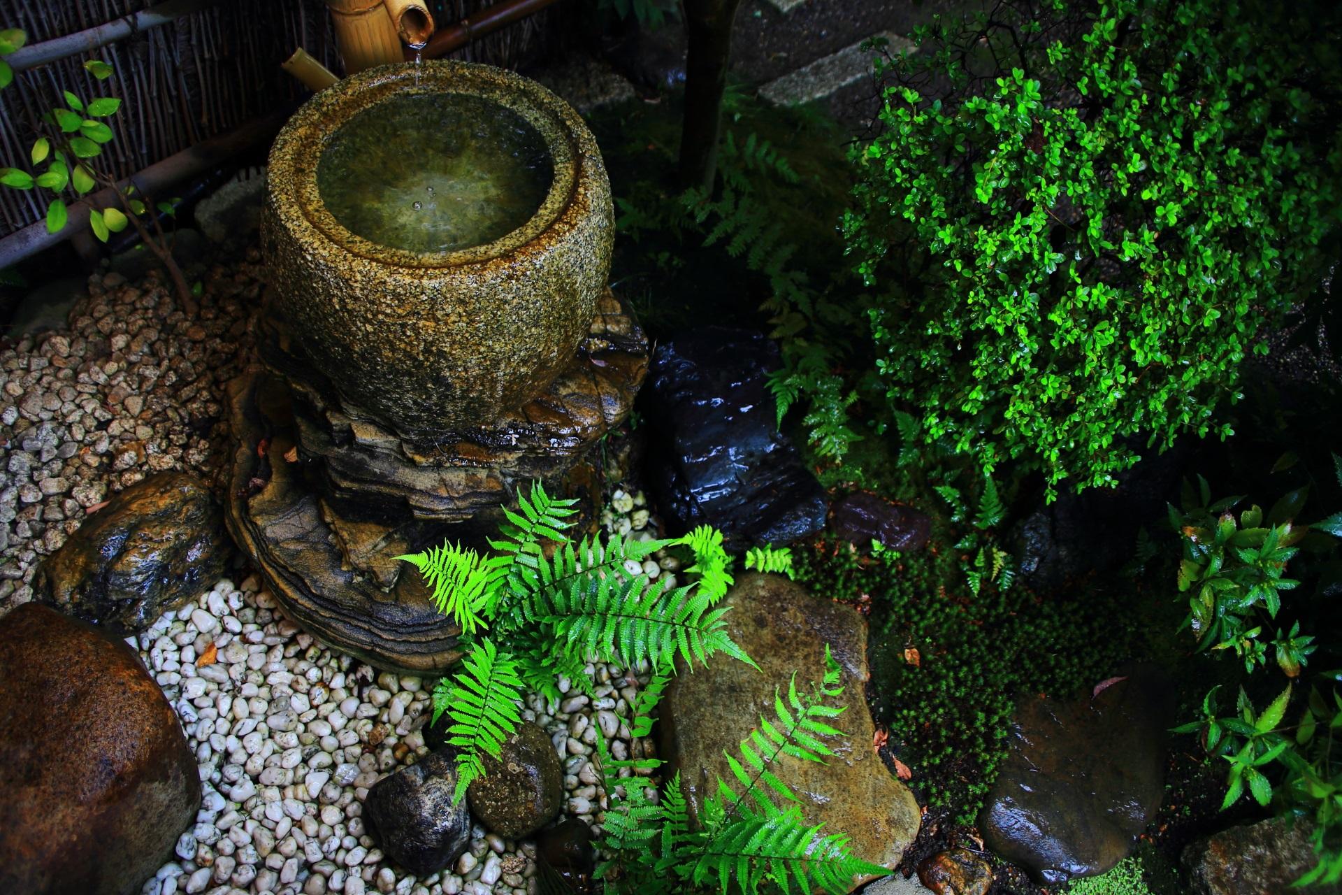 観智院の茶庭の手水鉢
