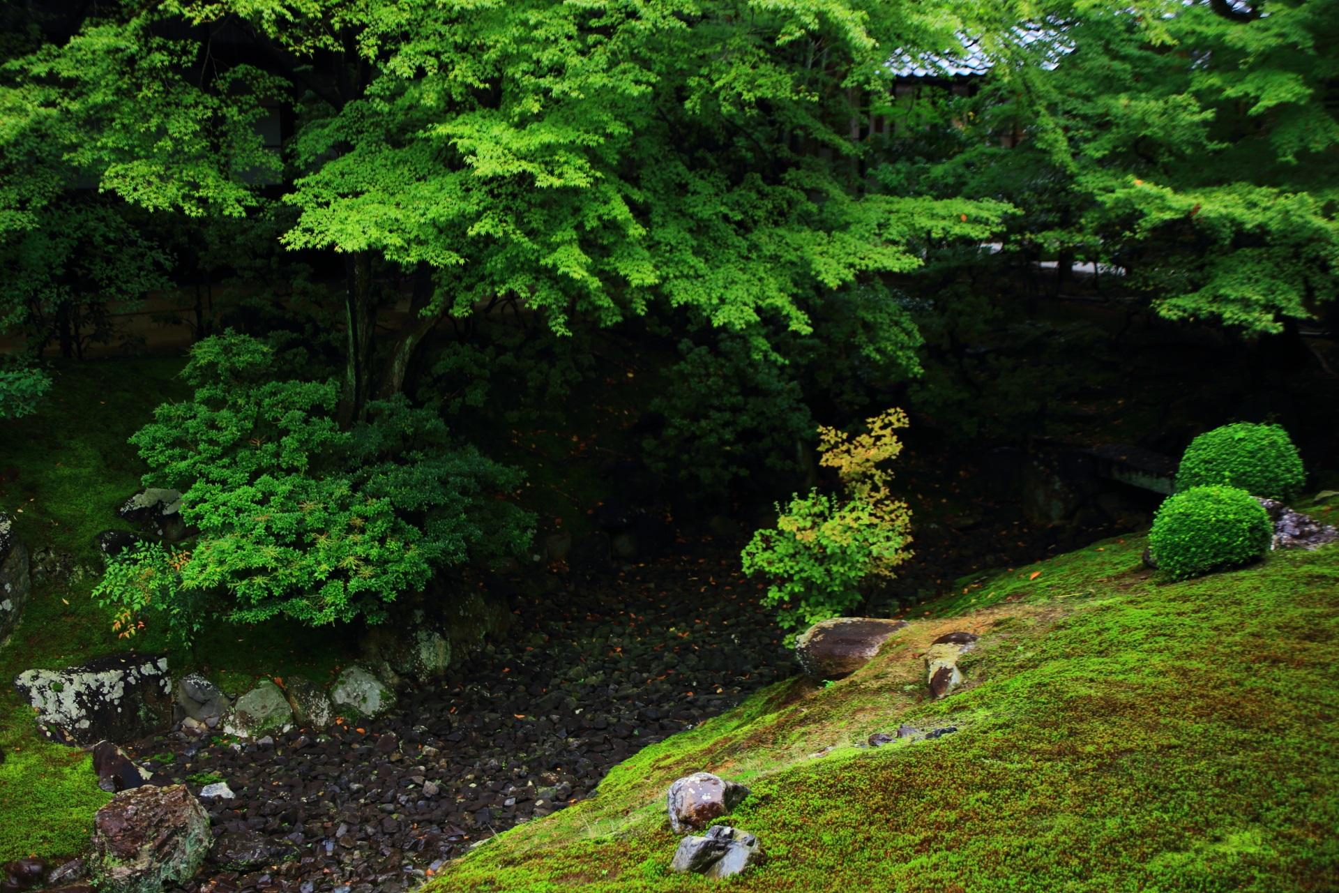 青もみじの美しい相国寺の裏方丈庭園