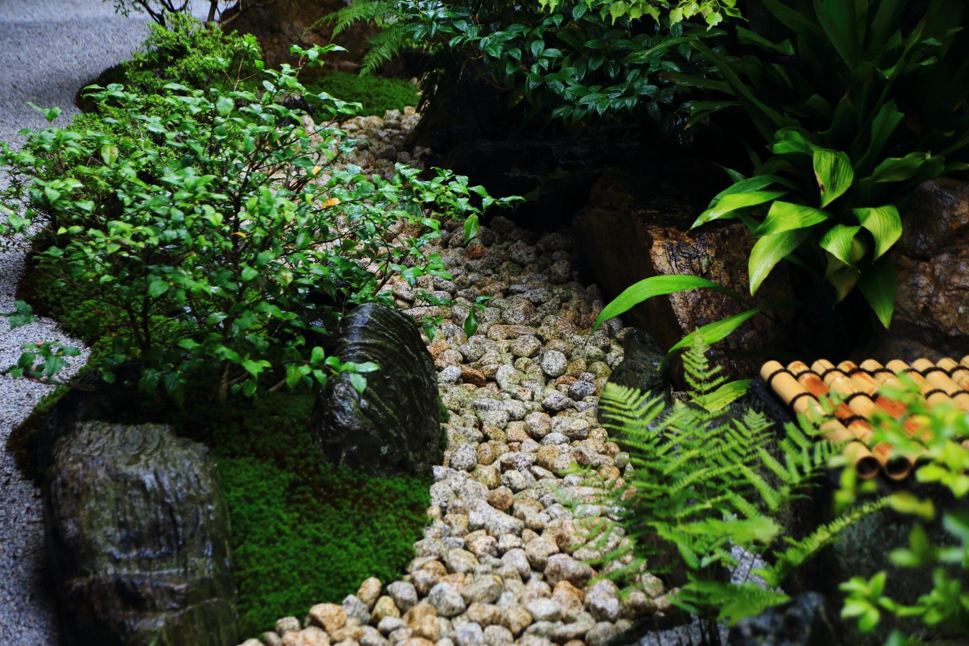 風情ある観智院の中庭