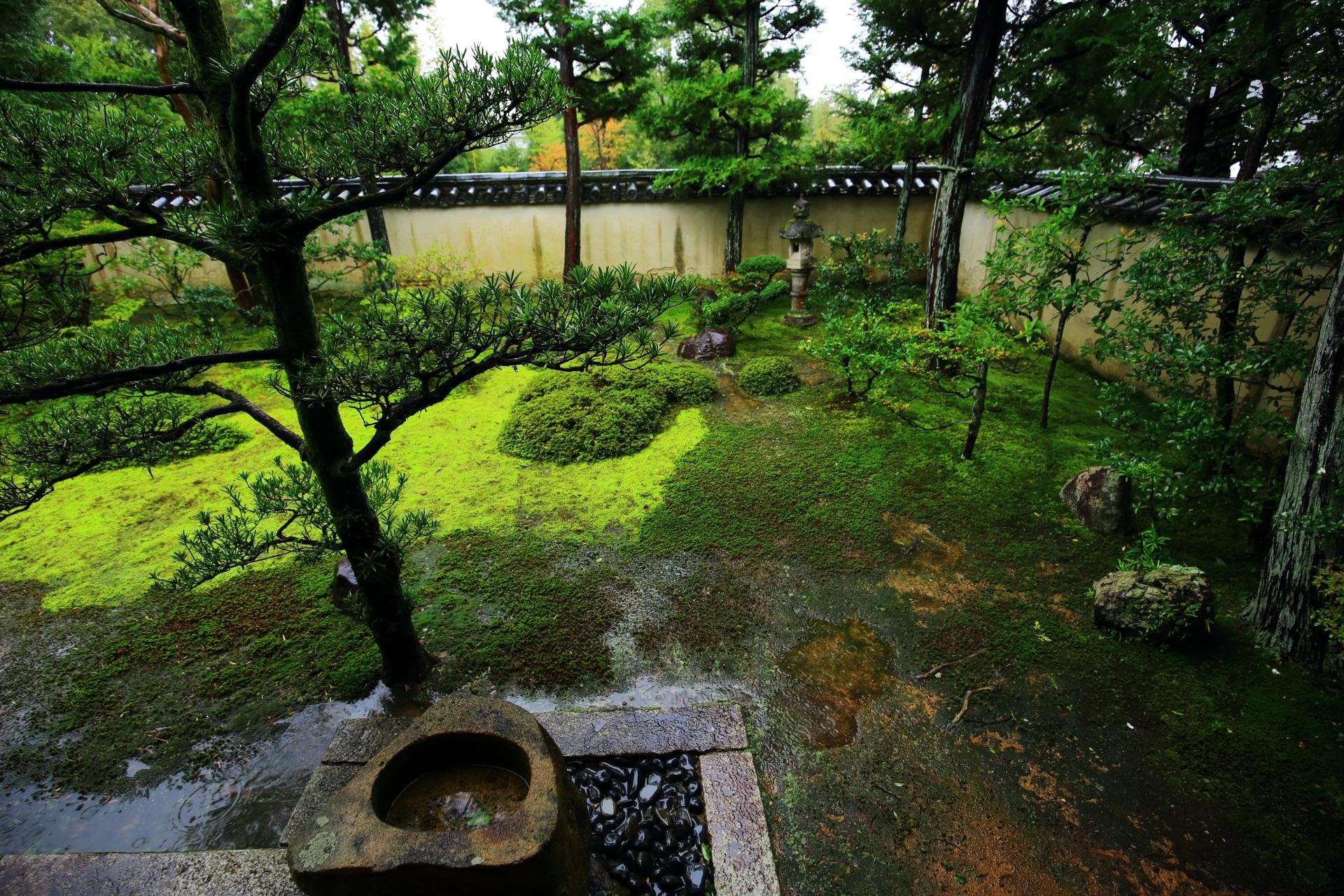 風情ある大雄院庭園の西隅