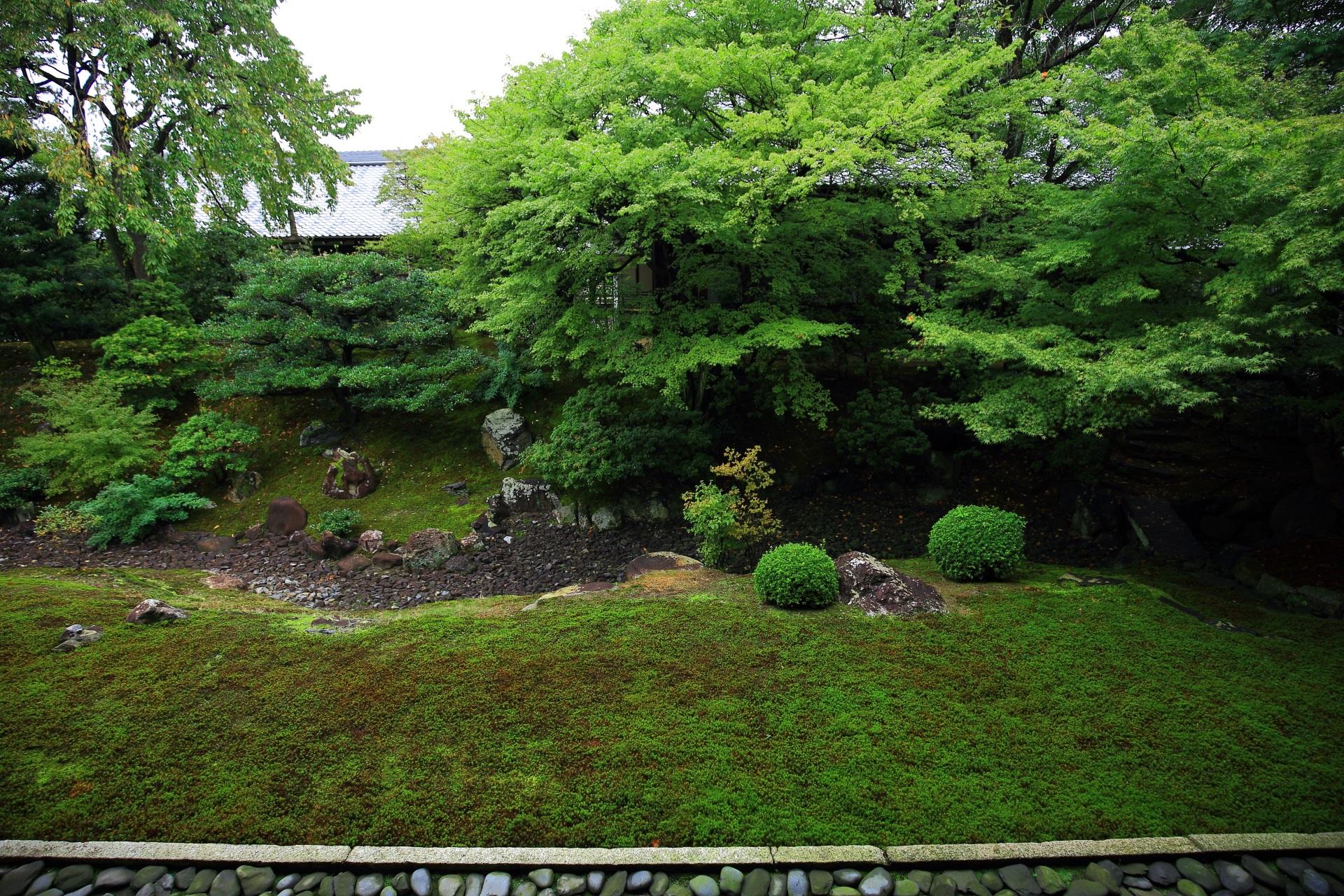 方丈の北側に広がる裏方丈庭園