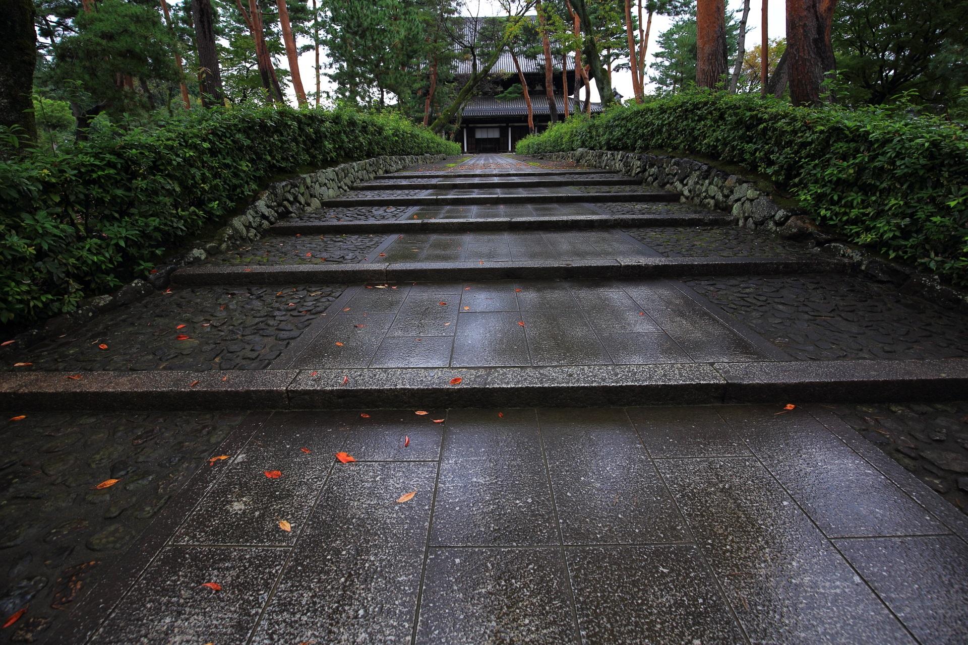 相国寺の法堂と雨に濡れた石畳