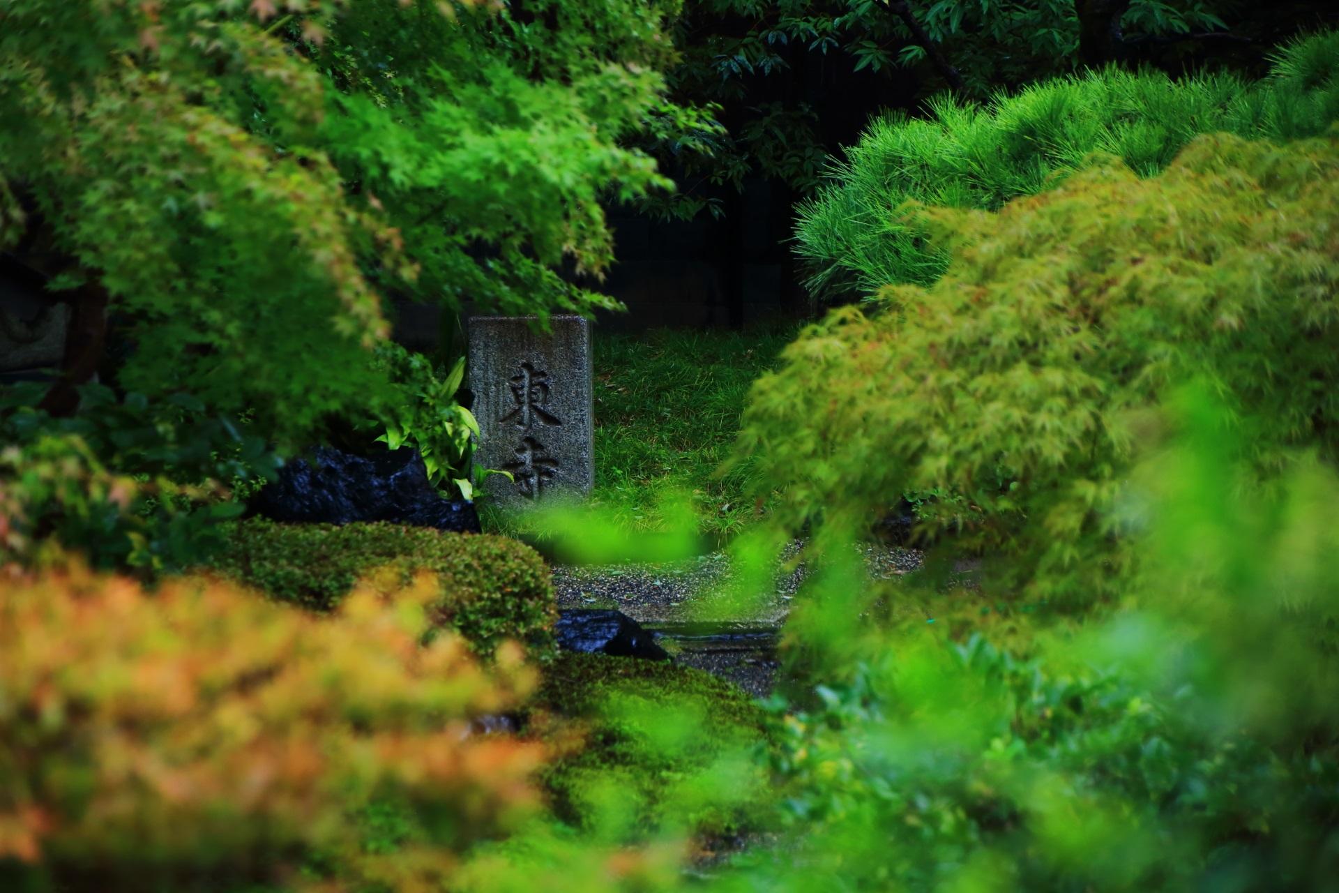 東寺と書かれた石と美しい緑