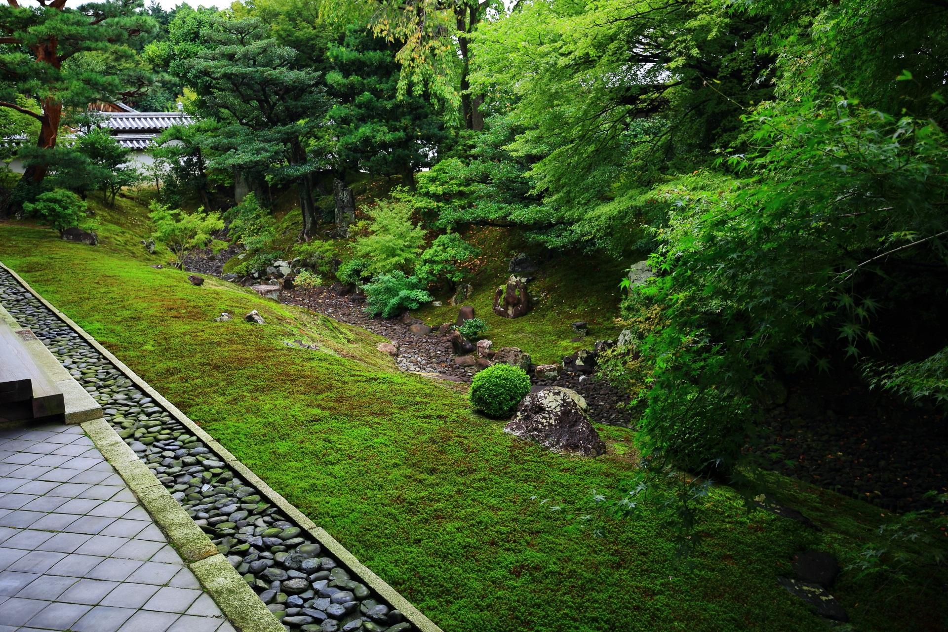 相国寺 庭園 上品な枯山水と名勝の裏方丈庭園