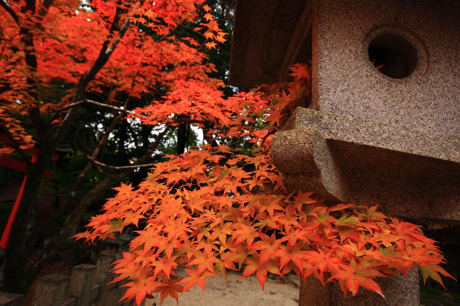 石燈籠と溢れ出す大きな葉のオレンジ系の紅葉
