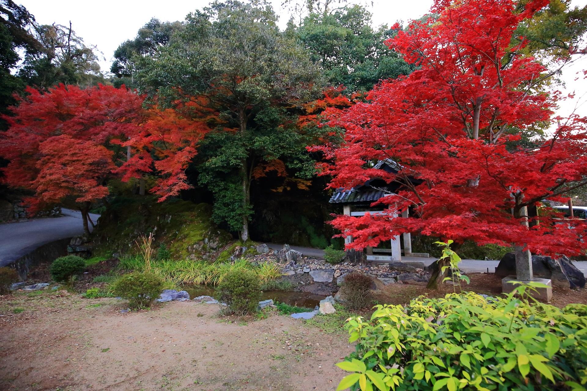 興聖寺の石門とそこから続く琴坂を彩る燃えるような紅葉