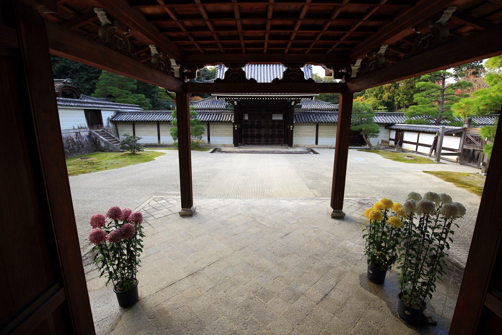 本坊から眺めた勅使門と菊の花が飾られる石庭