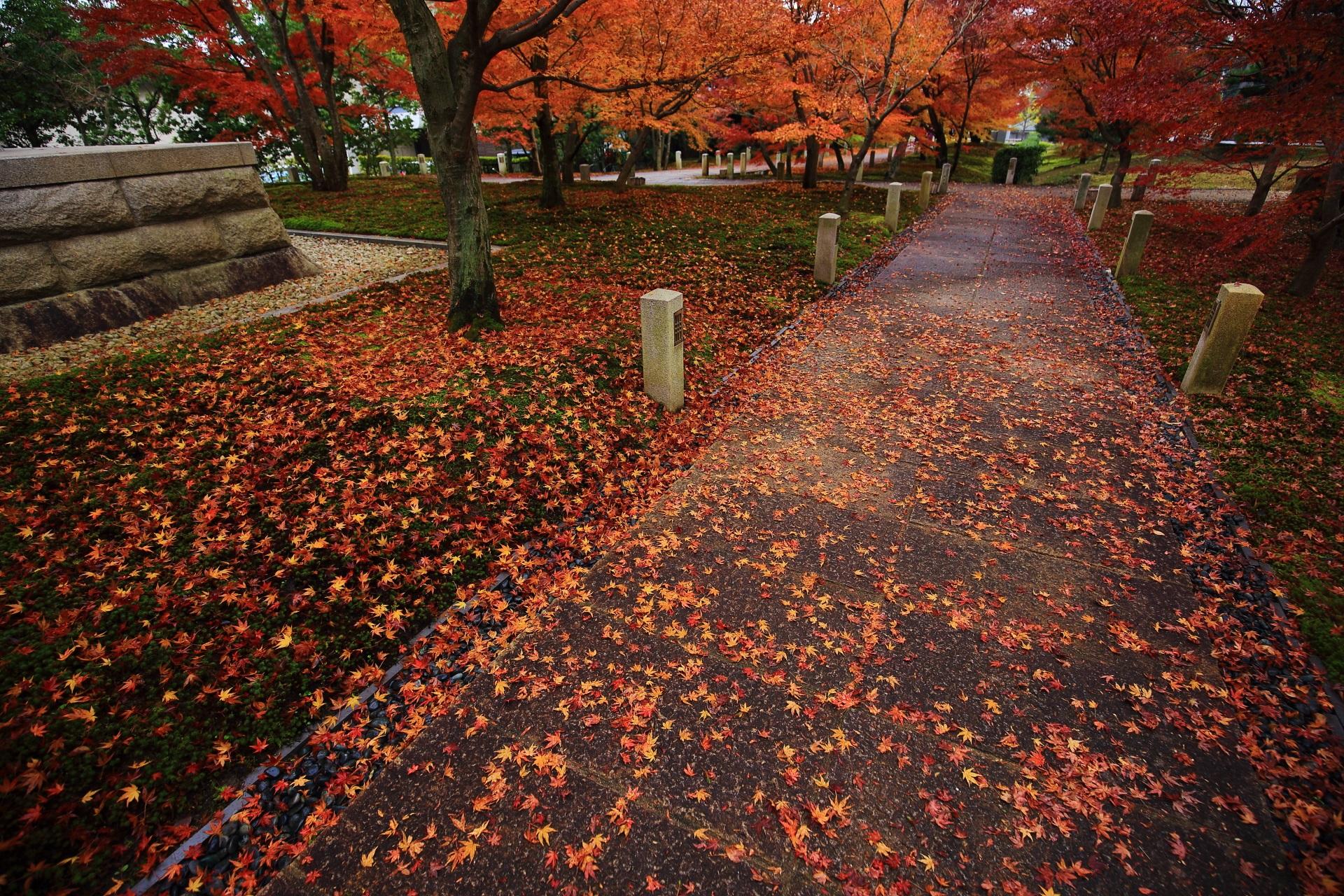 雨に濡れた石畳の参道と苔を彩る色とりどりの散り紅葉