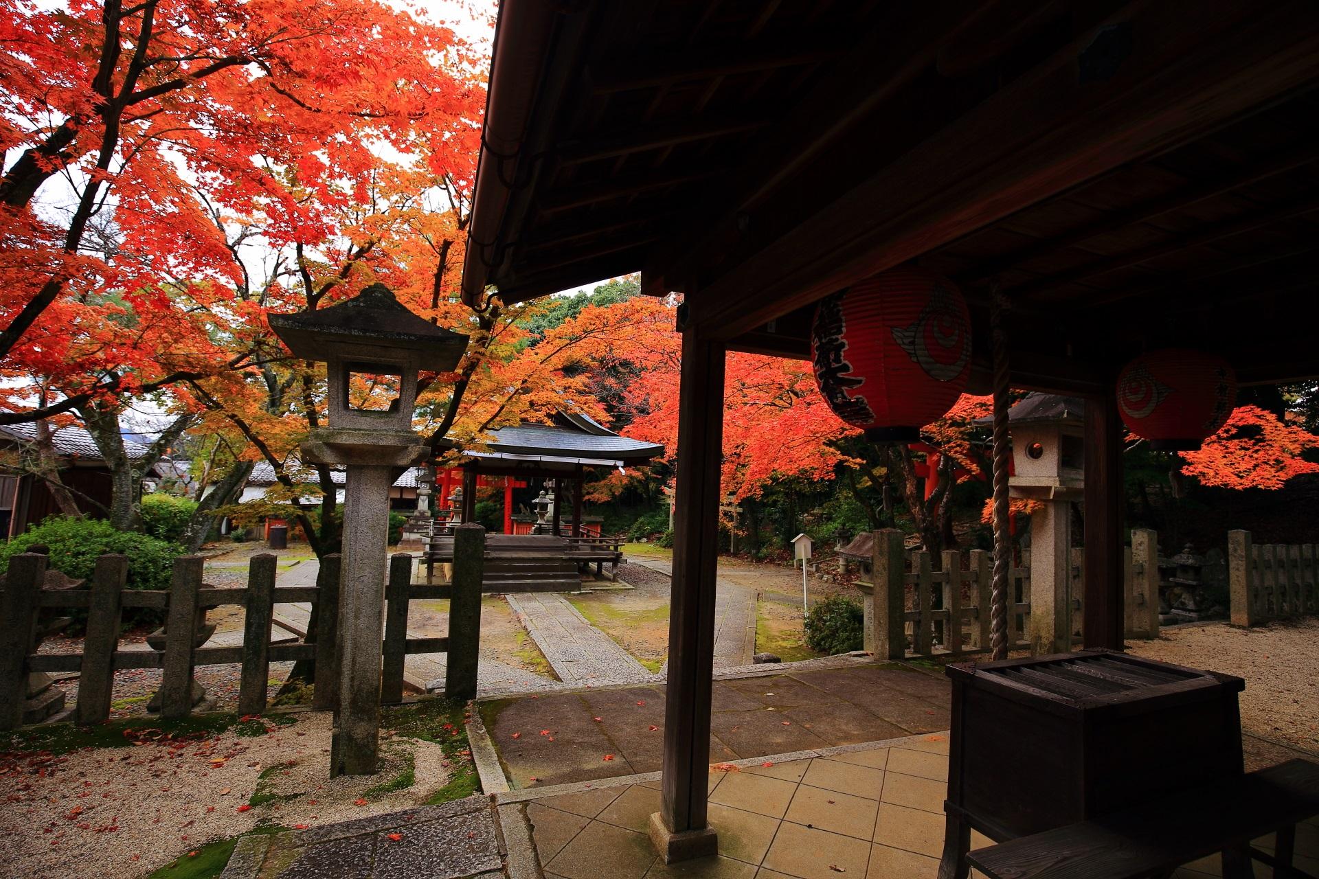 竹中稲荷神社の本殿から眺めた秋色の境内