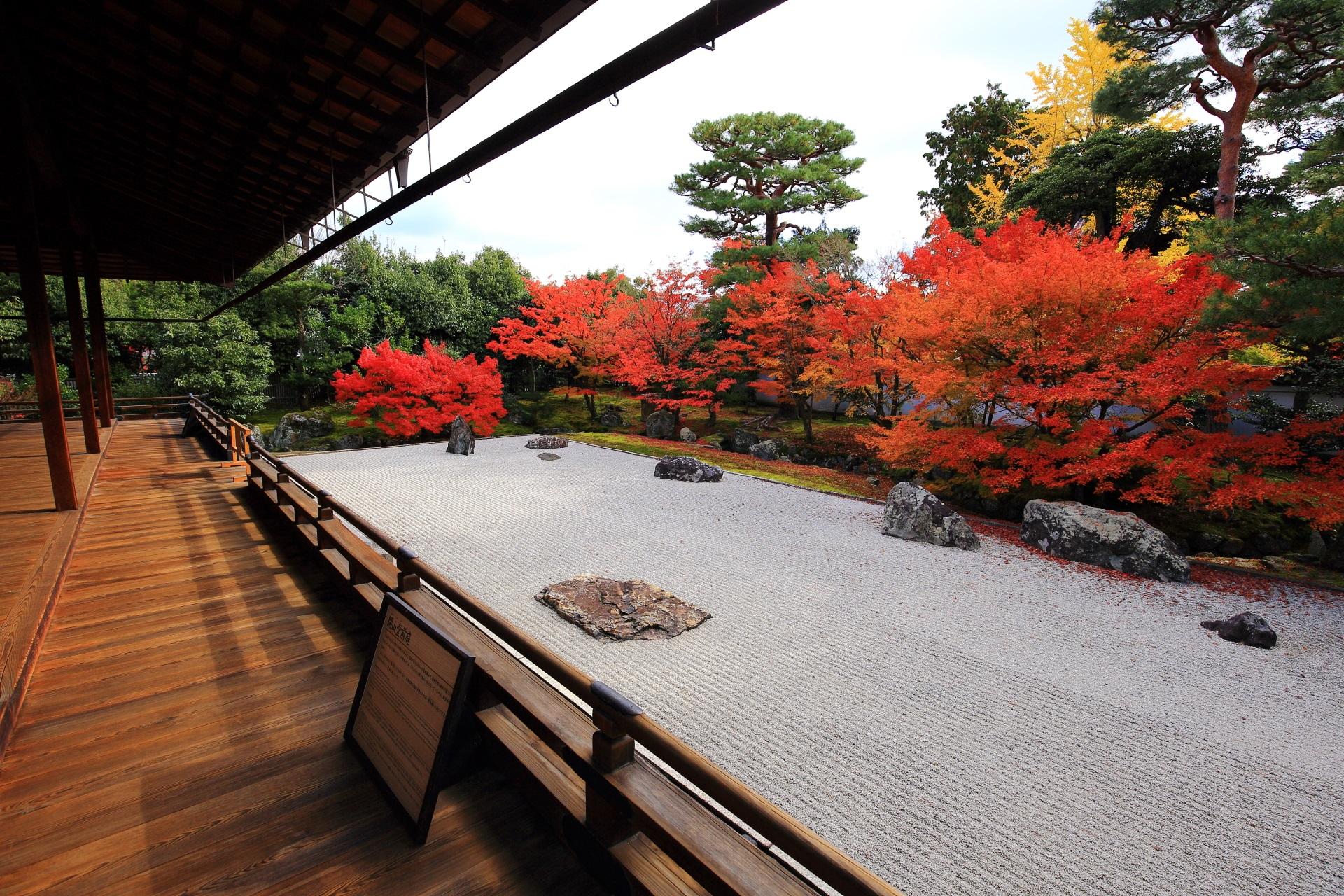 開山堂に上がると広がる息をのむ美しい紅葉の庭園