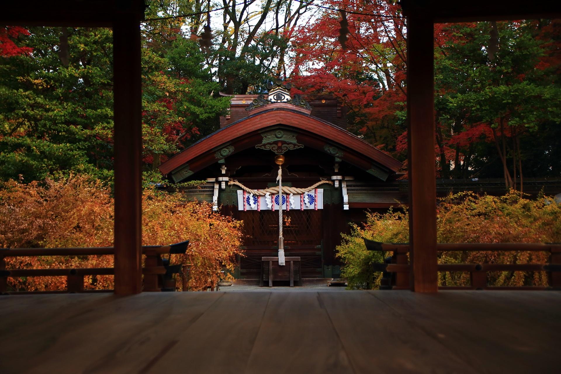 梨木神社の拝殿から眺めた秋色につつまれた本殿