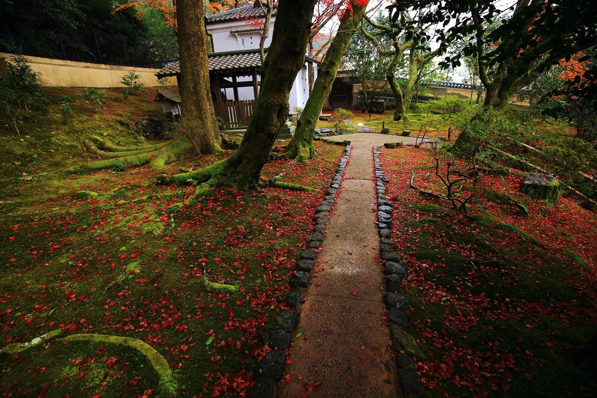 霊鑑寺の白壁の土蔵を華やぐ散り紅葉