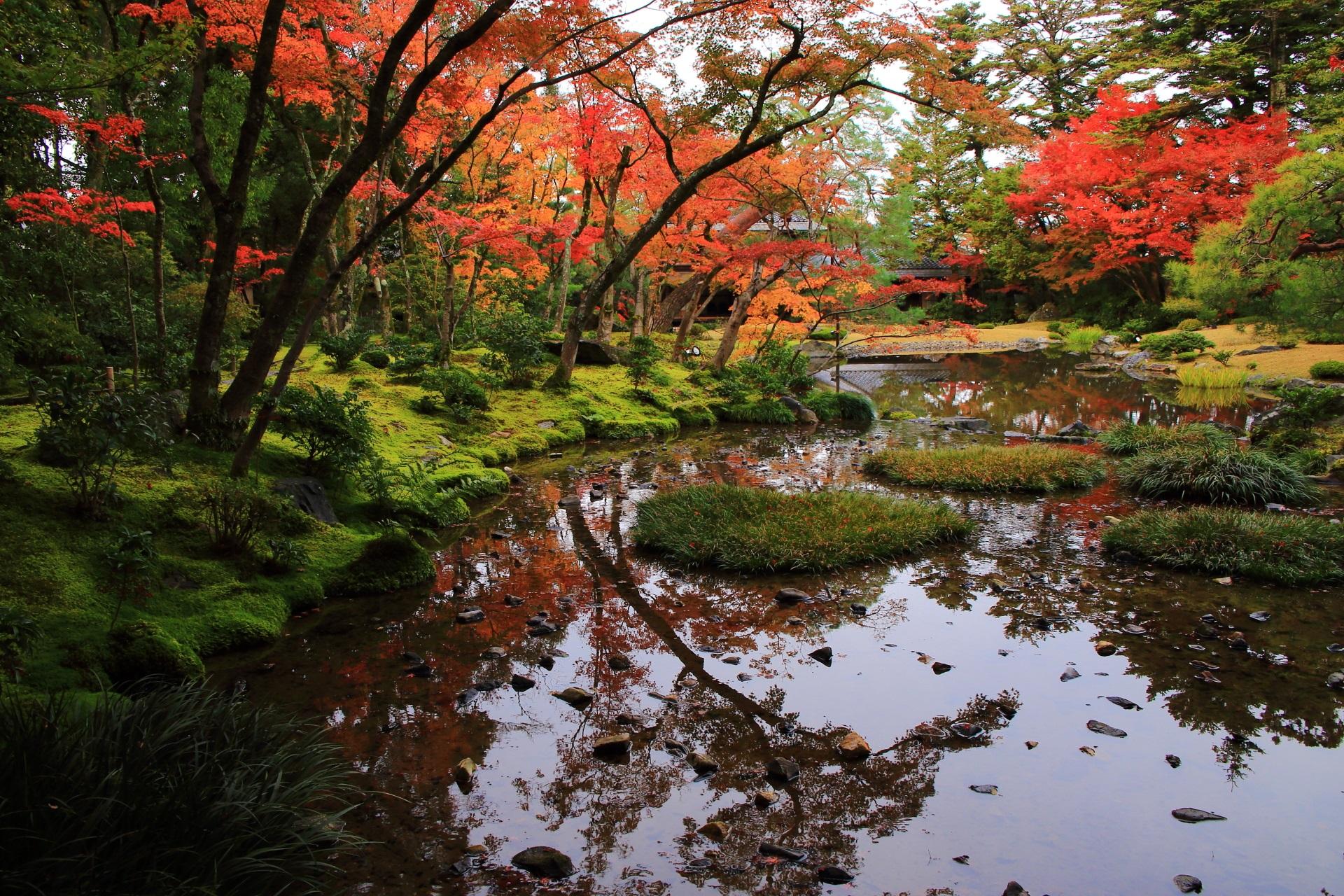 いつまでも見ていられそうな無鄰菴の静かな紅葉の絶景