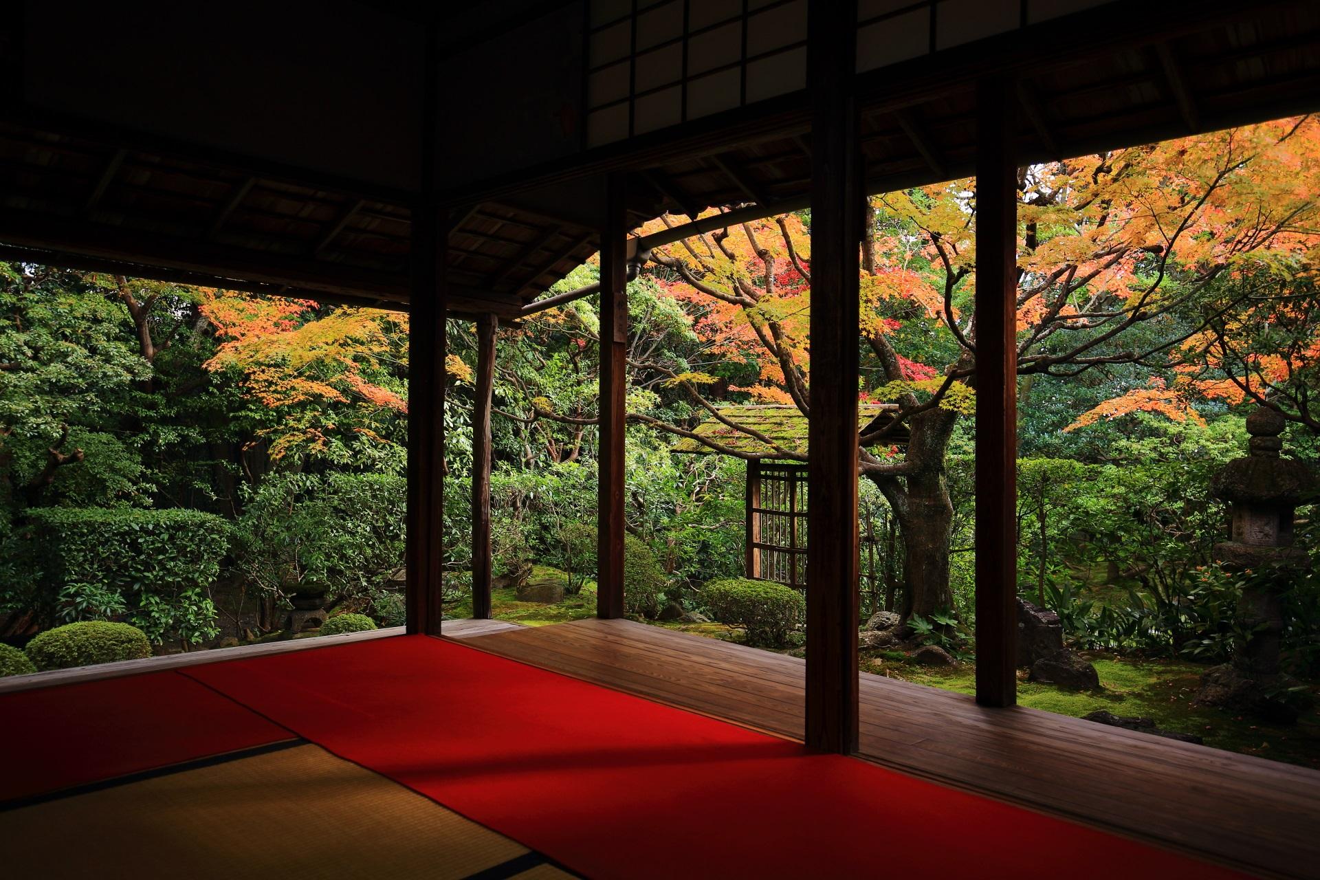 桂春院の「侘の庭(わびのにわ)」の紅葉