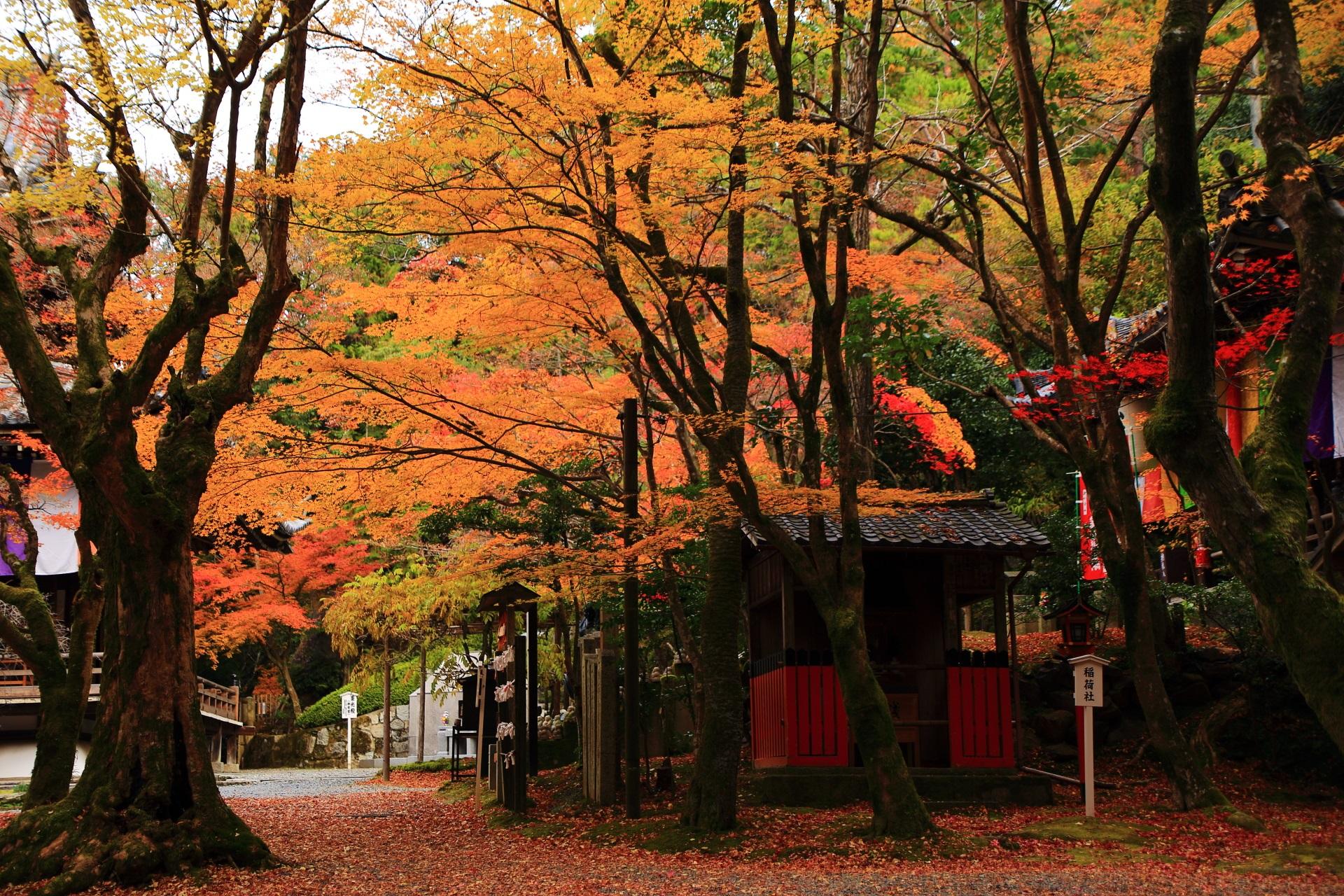 まだまだ綺麗な紅葉に覆われる大師堂や稲荷社