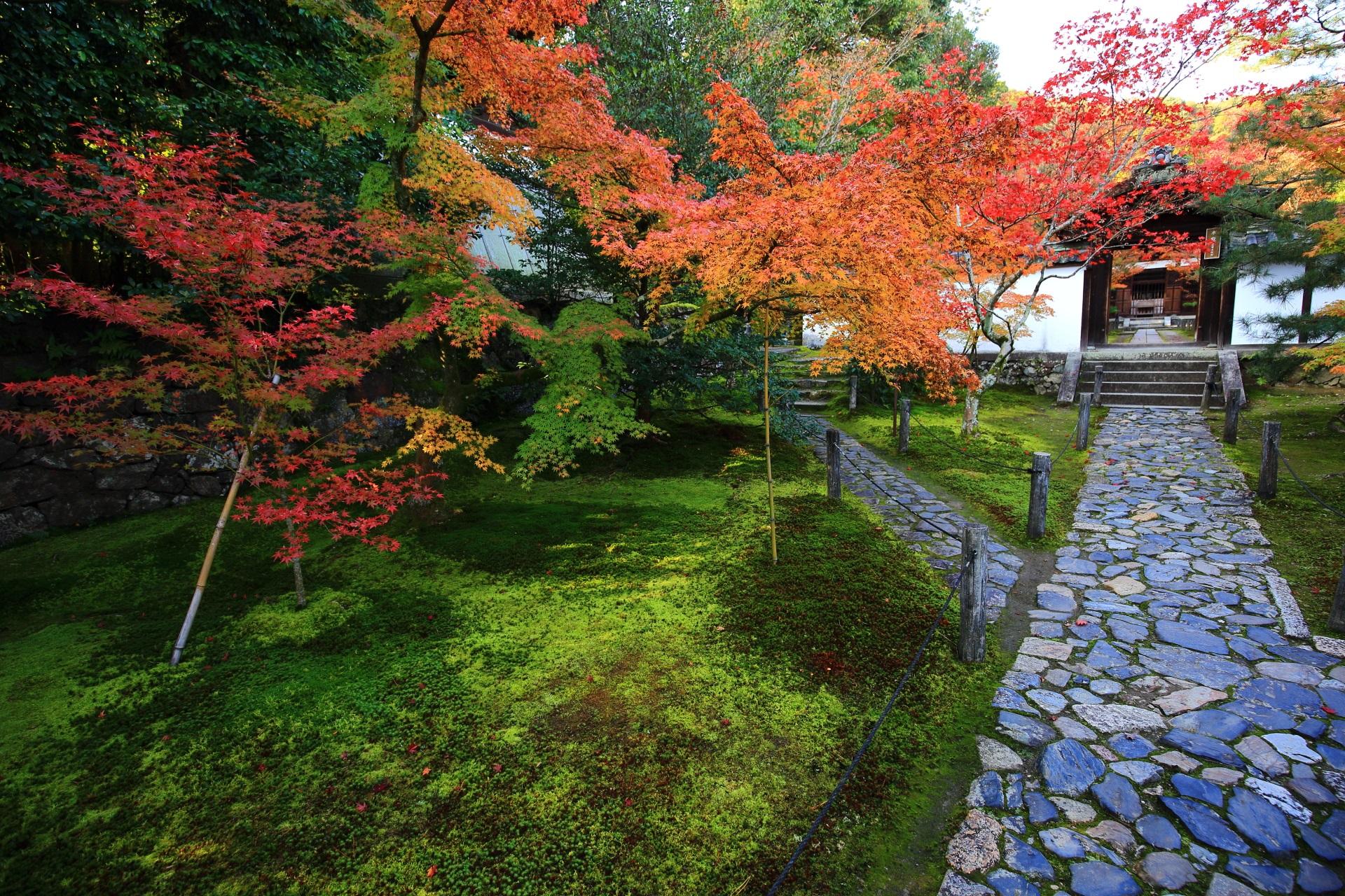 中門前の参道の紅葉と苔