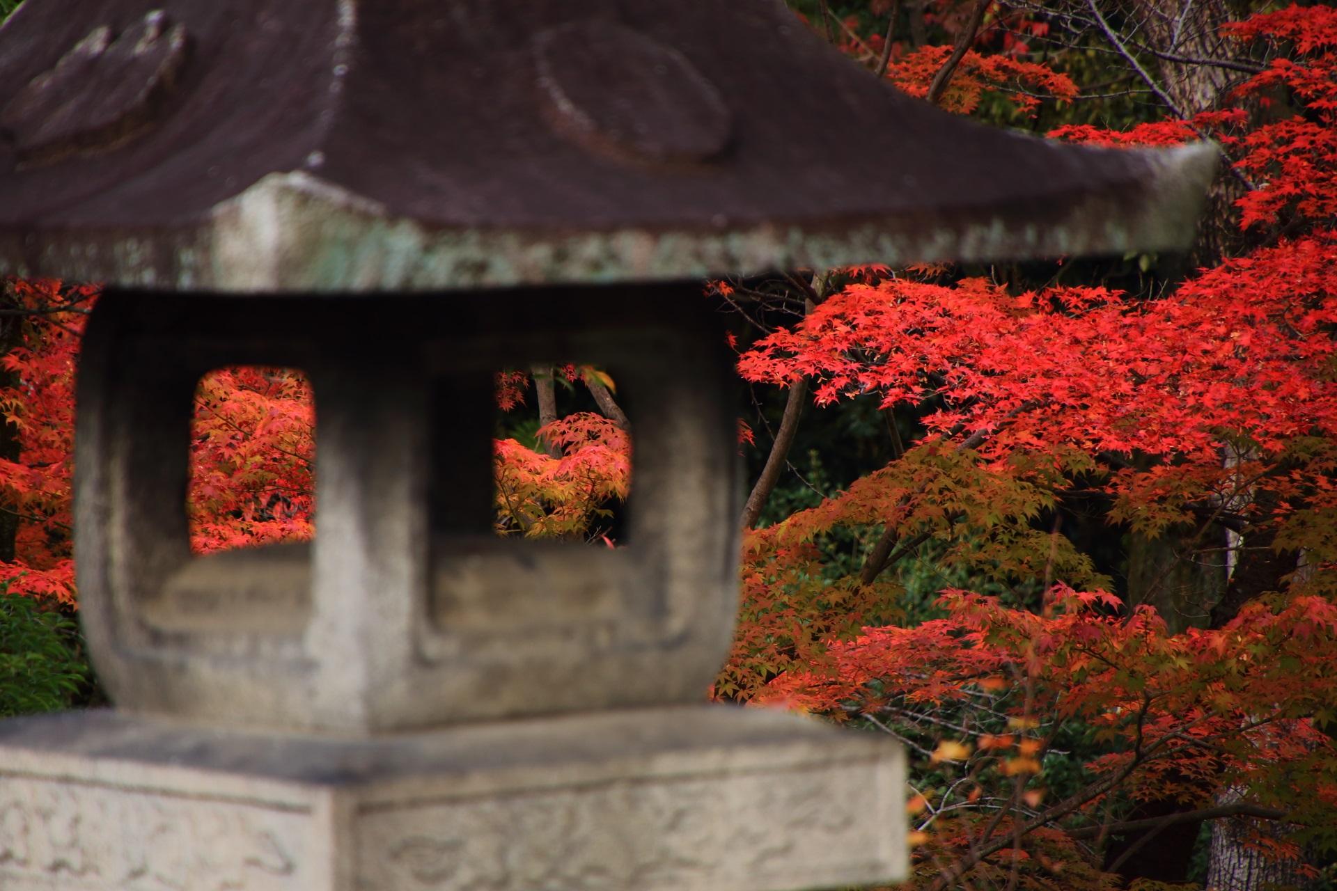 燈籠の向こうに見える大谷本廟の上品な秋色