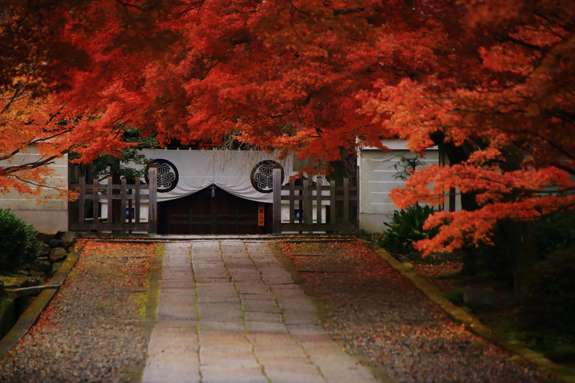 薄っすらと紅葉の影が映る情緒ある石畳の緩やかな参道