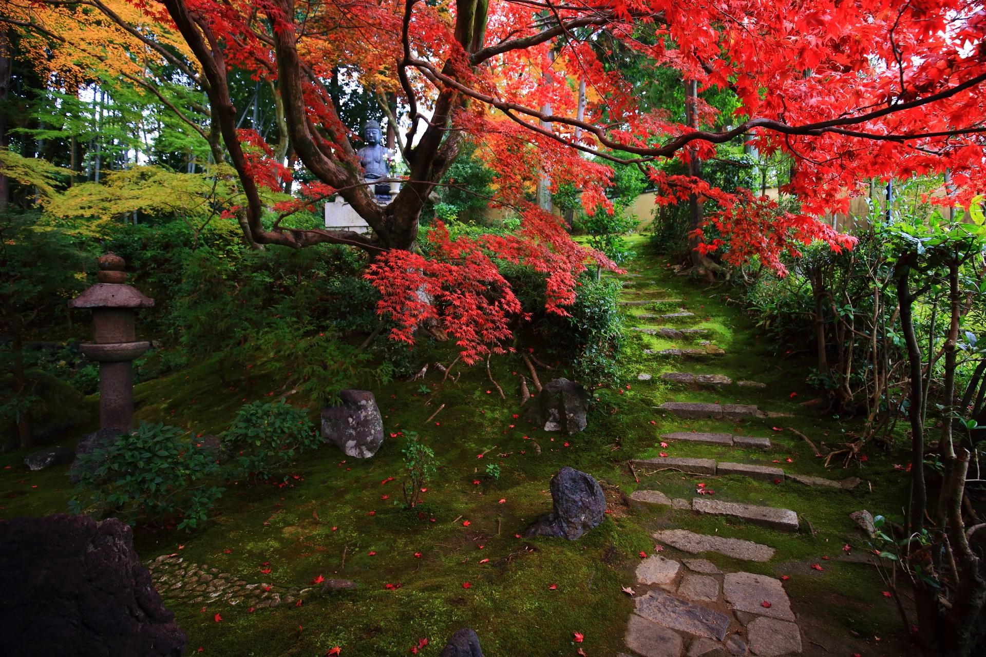 庭園の右の方の鮮やかな紅葉が彩る苔に覆われた緩い石段