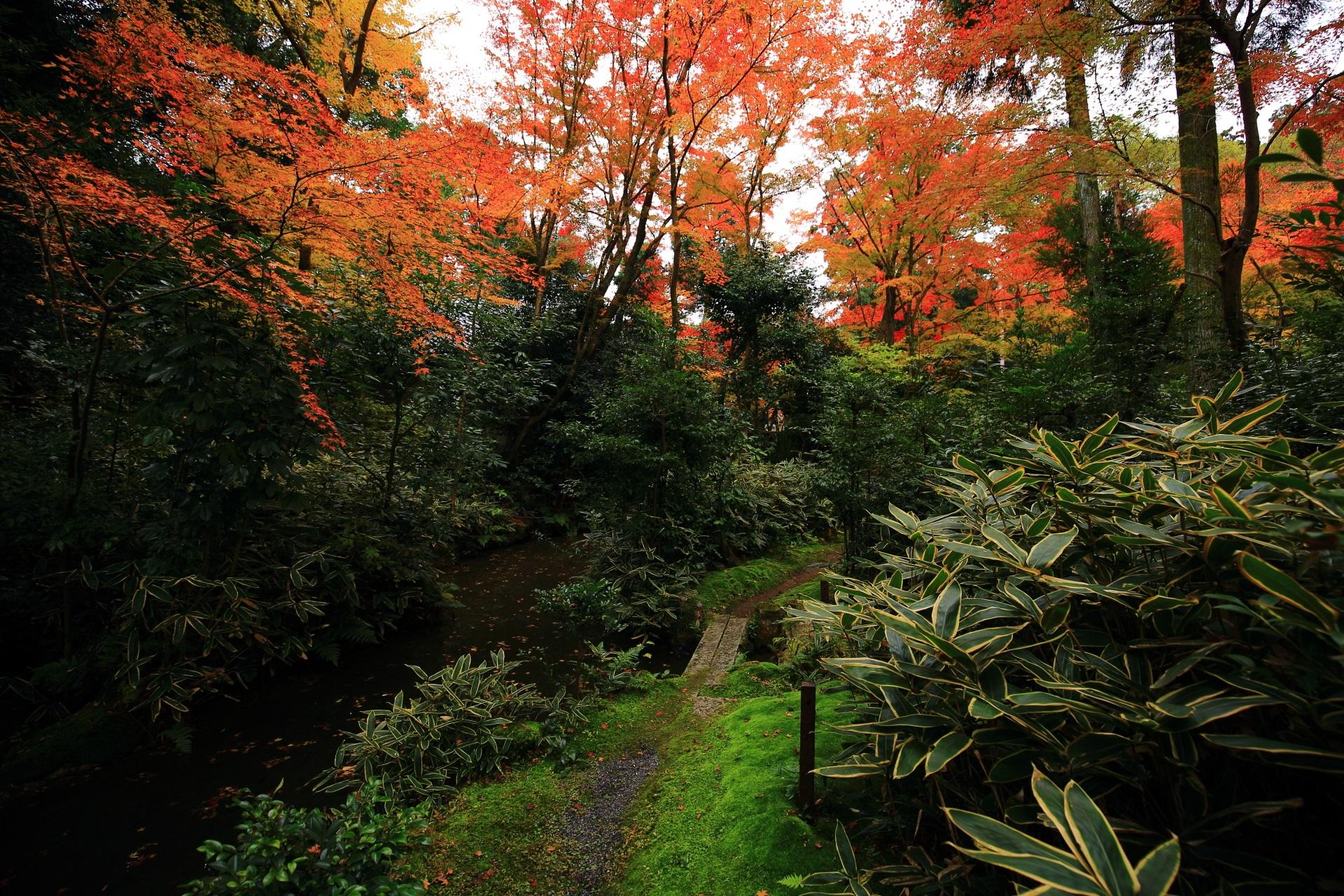 庭園の奥には心字池がある緑と紅葉の溢れる池泉式の含翆庭