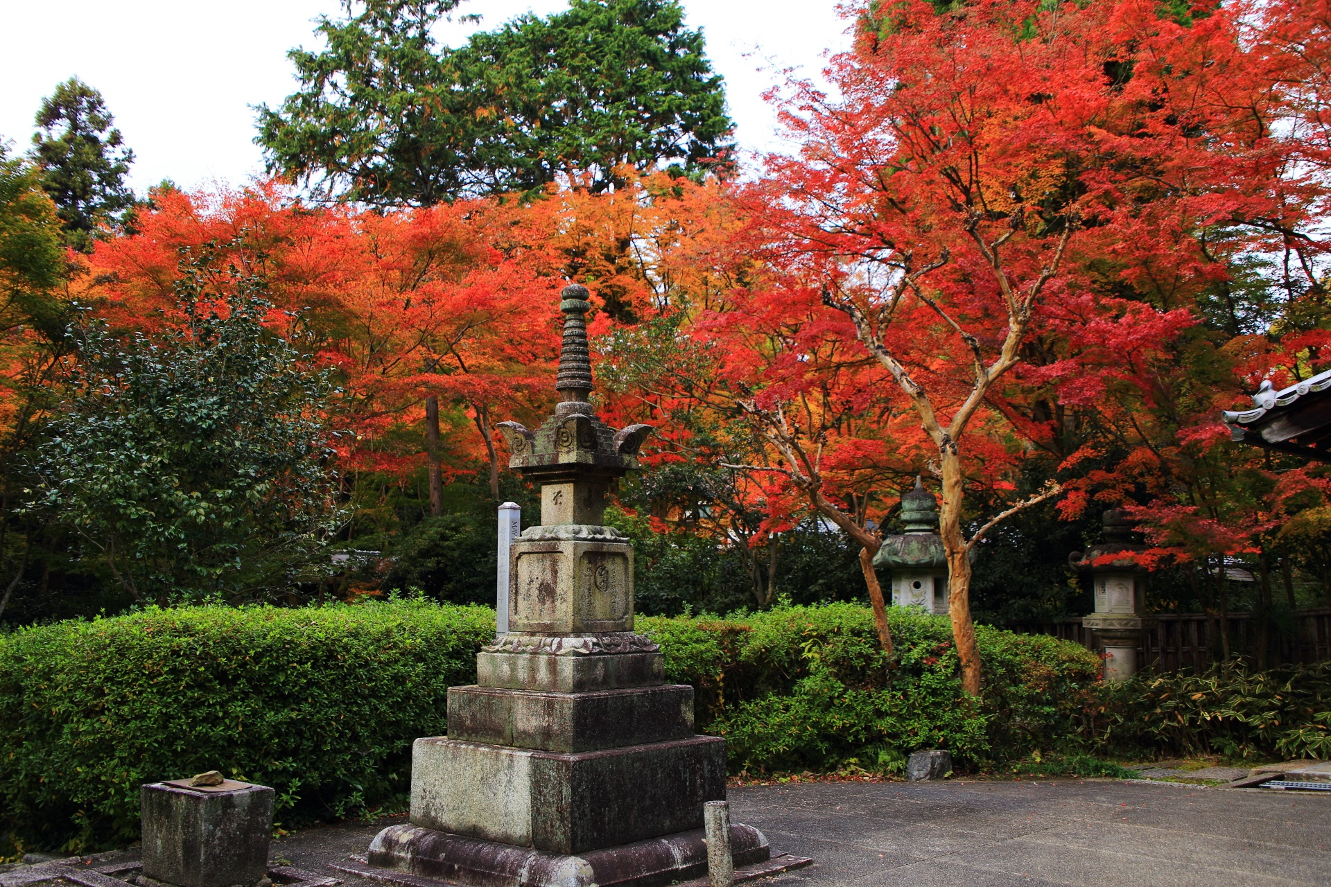 来迎院の本堂や石塔を彩る色とりどりの紅葉