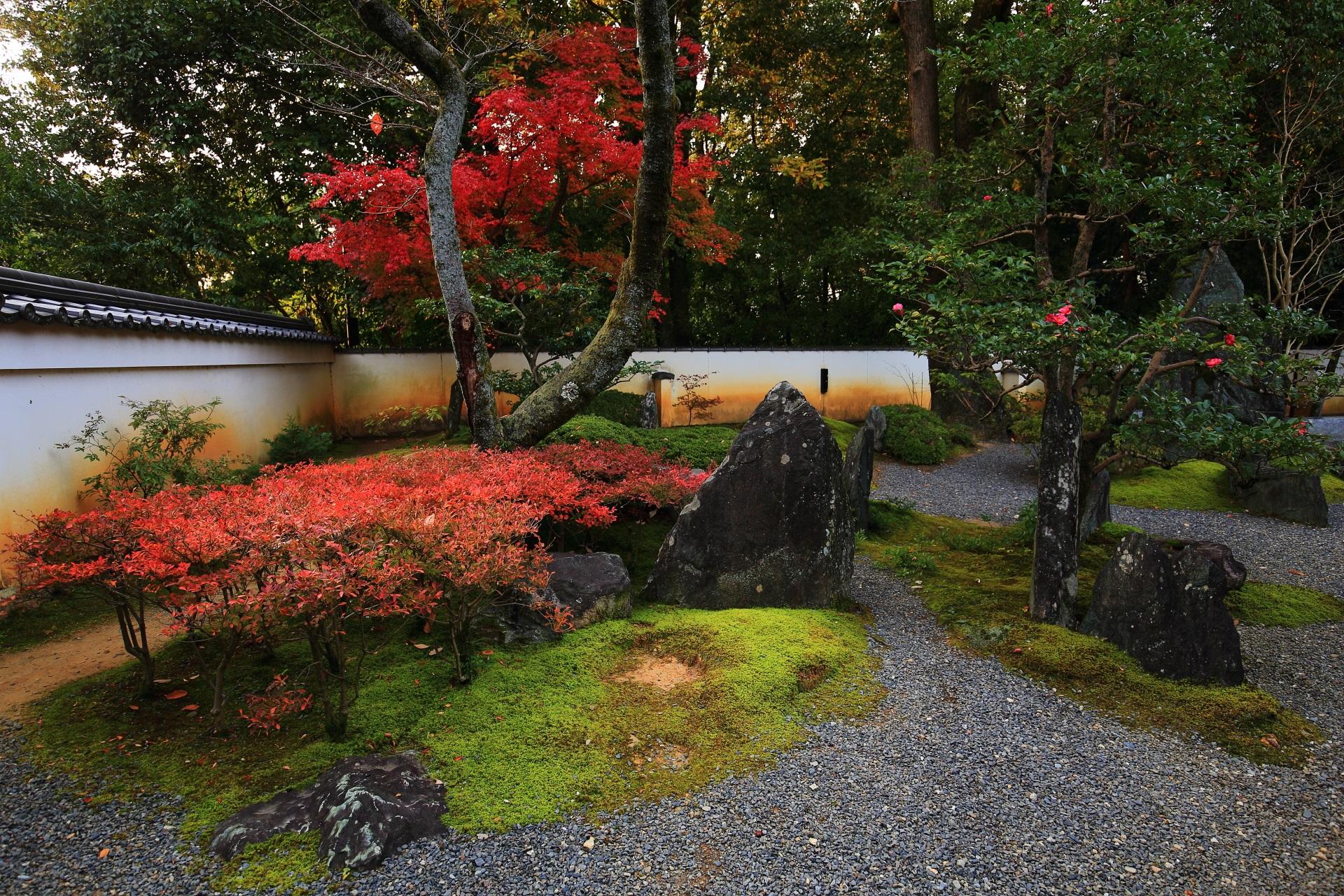 椿や色づくツツジのある彩りの秋の庭園