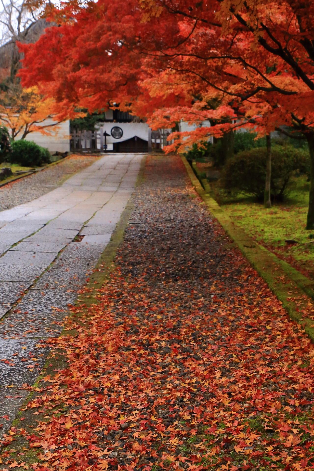 奥に見える玄関と手前の多彩な散り紅葉