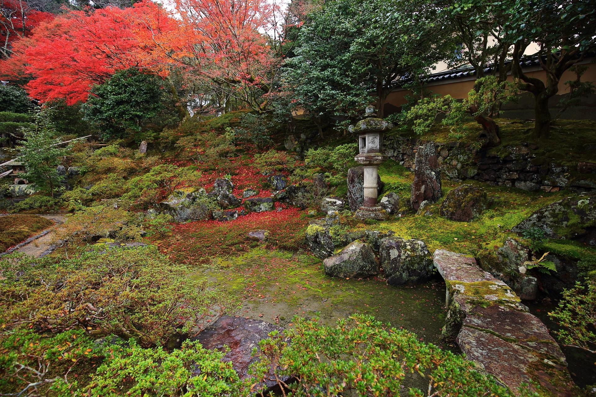 晩秋に染まる霊鑑寺の風情ある枯山水庭園