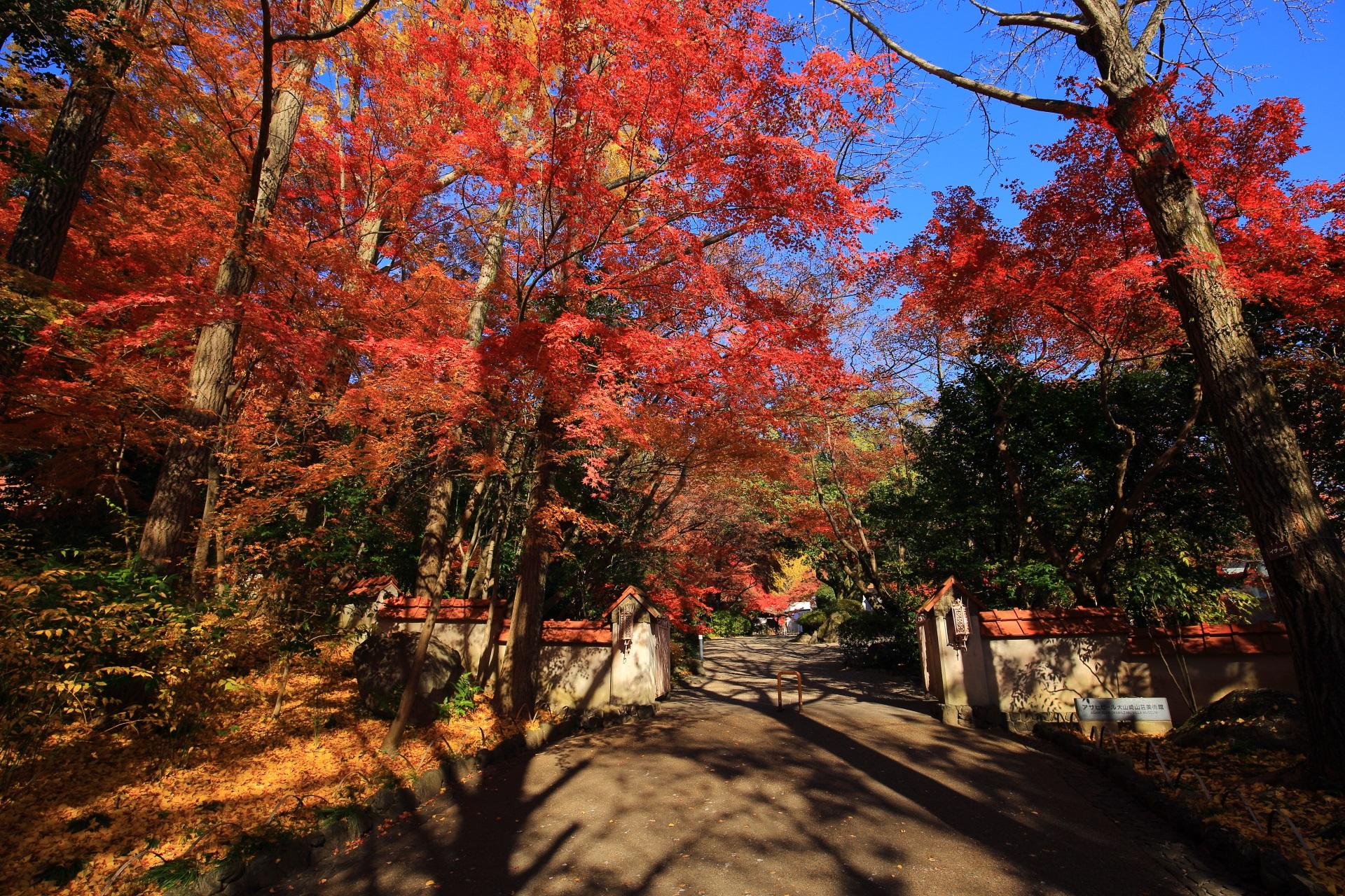 美術館の門の辺りの鮮やかな紅葉