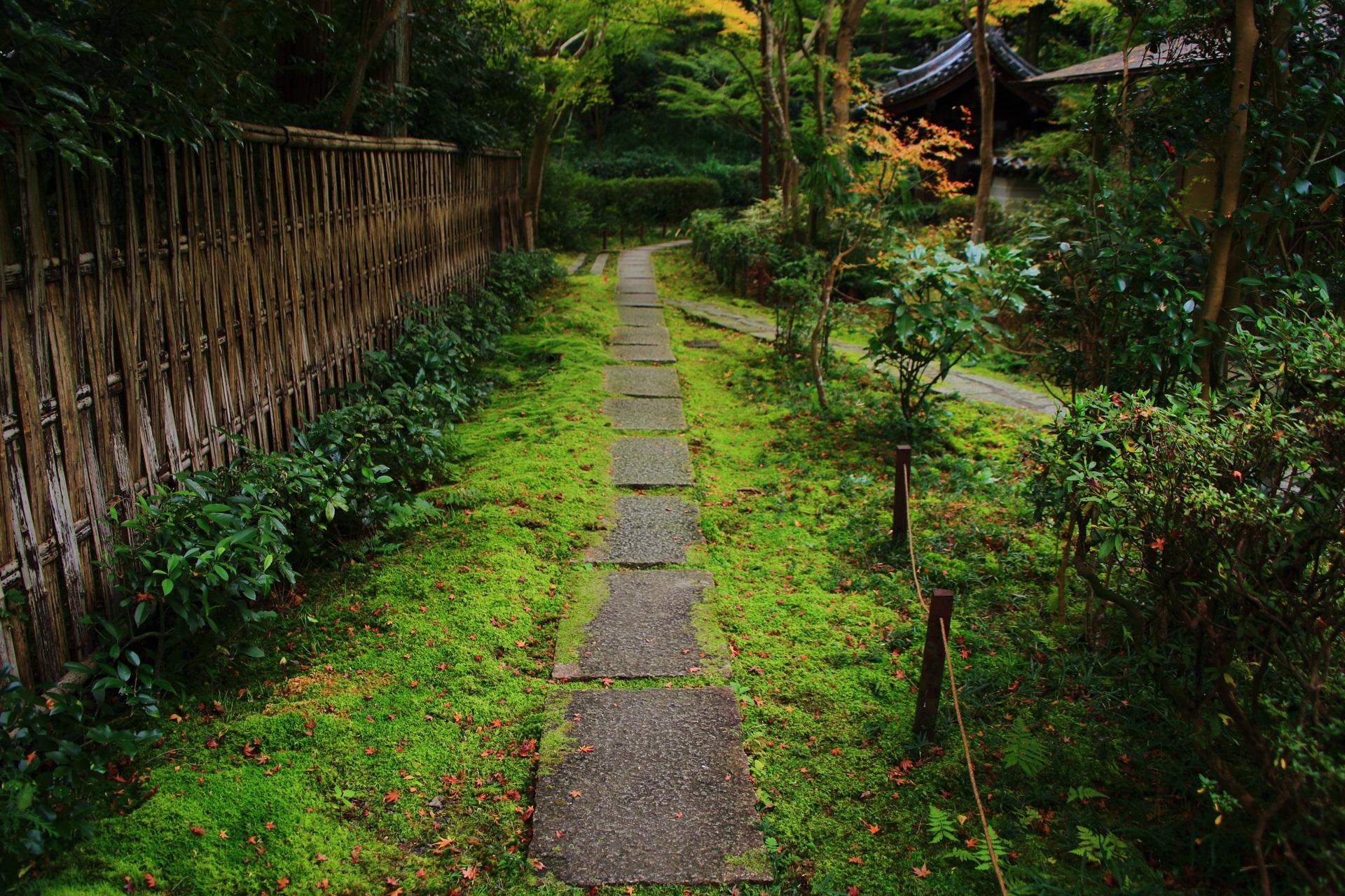 来迎院の茶庭「含翆庭」(がんすいてい)へ続く美しい苔と石の参道
