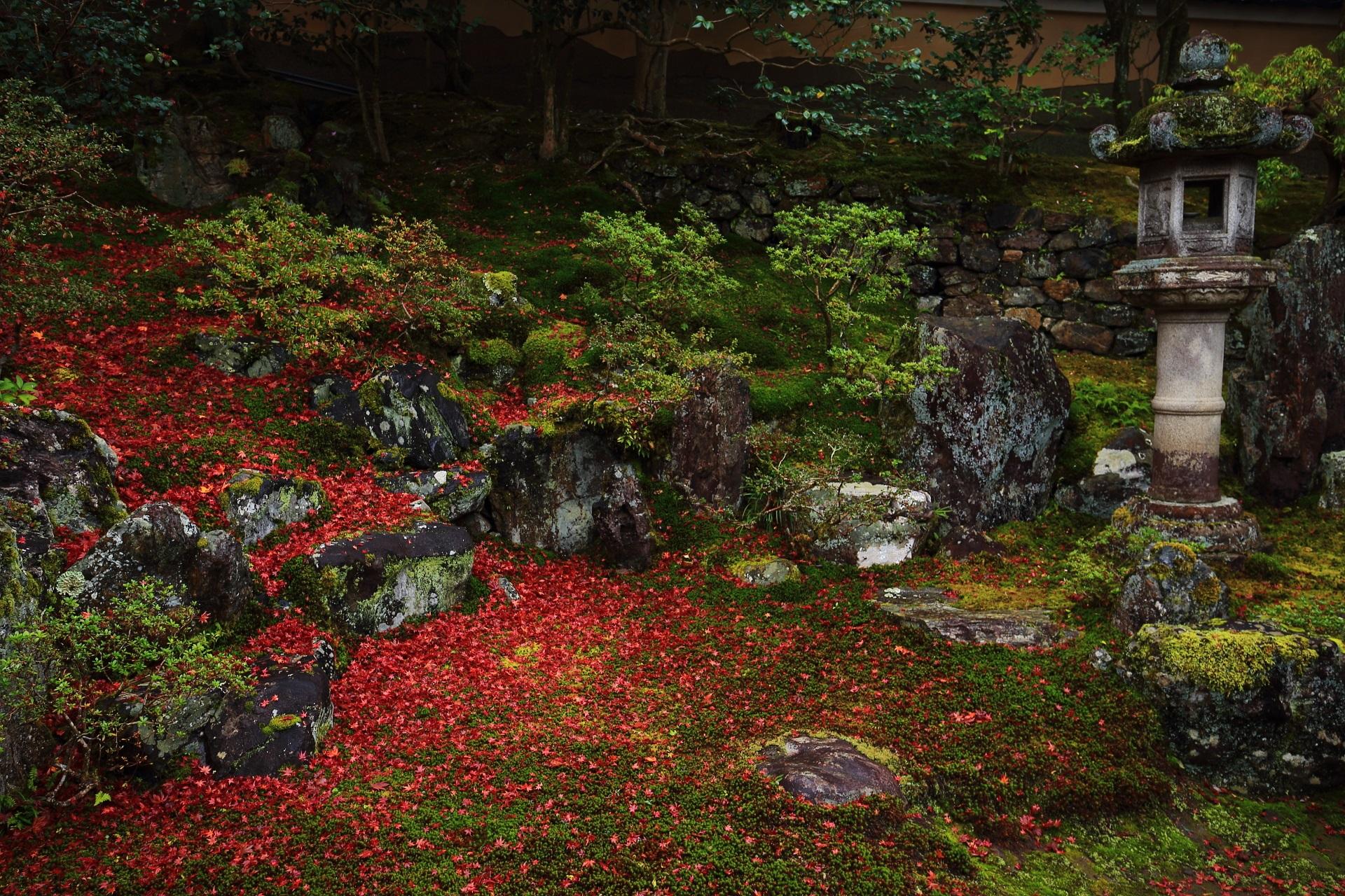 豪快な散りもみじに染まった様々な形や大きさの岩と佇む燈籠