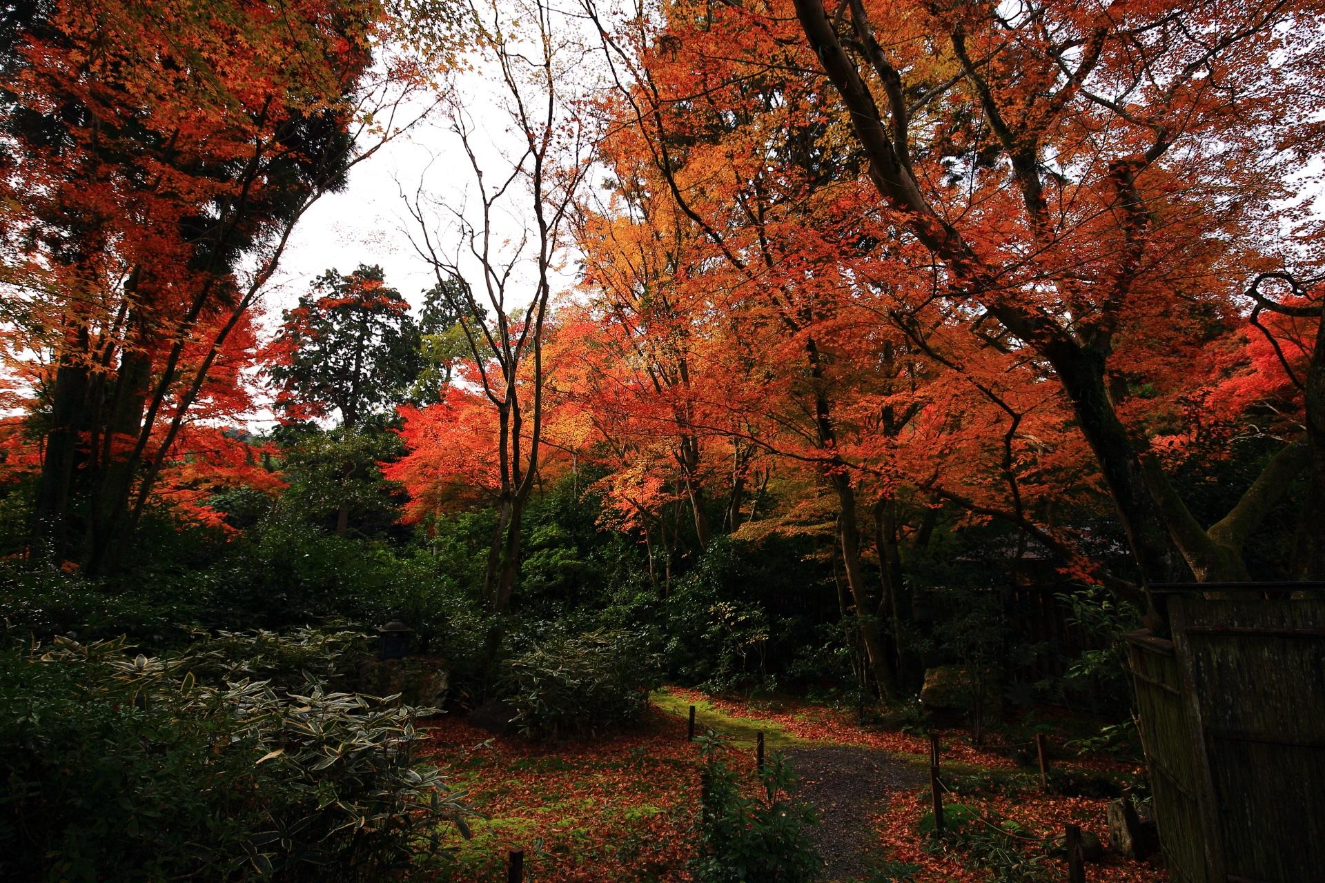 深い秋色につつまれる長閑な含翠庭