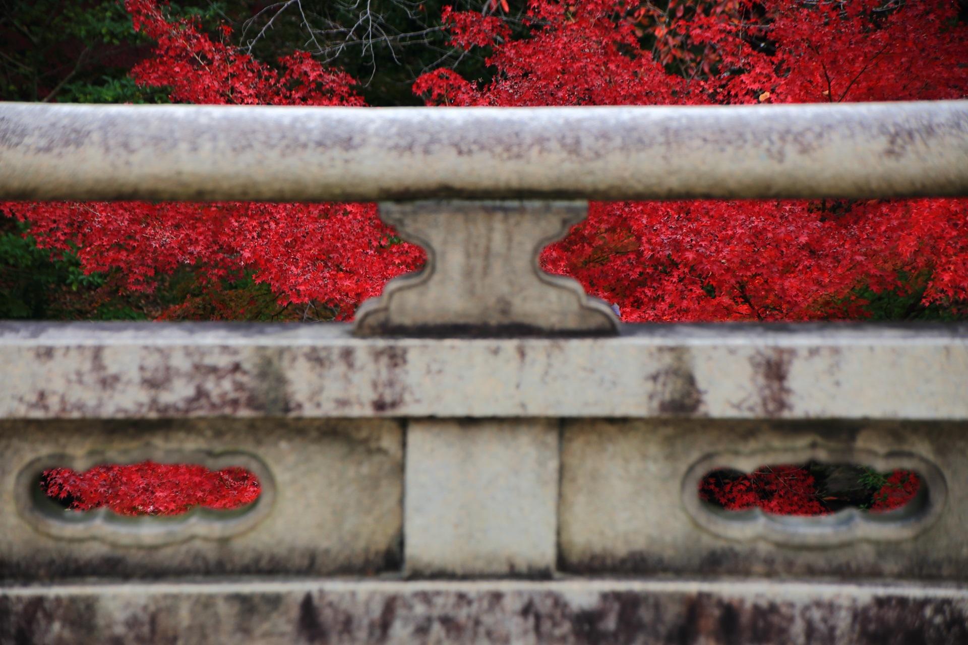 大谷本廟の石橋の欄干から見える艶やかな紅葉
