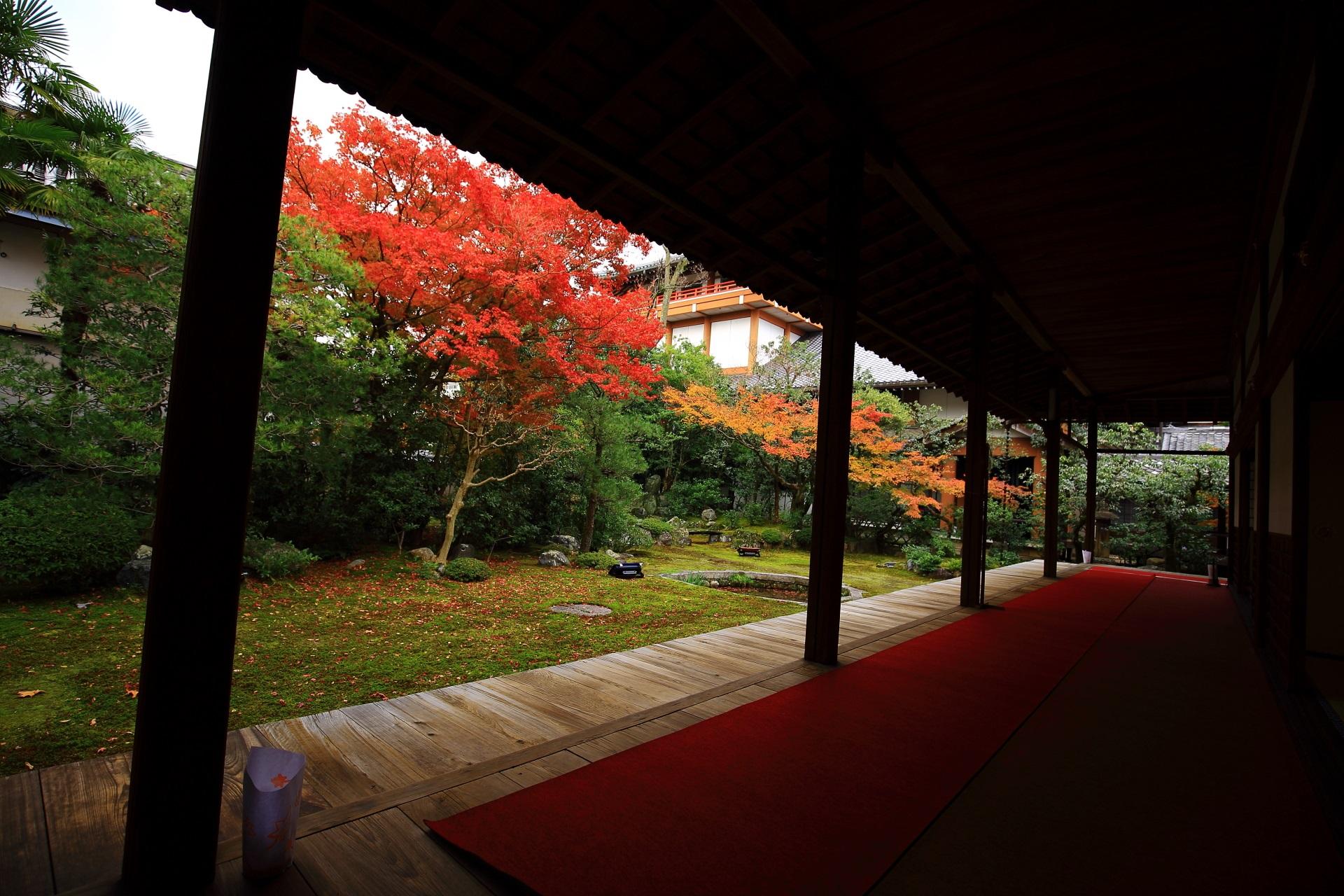 落ち着いた秋の空間が広がる本法寺