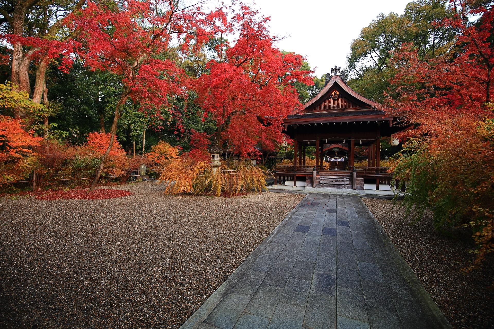 梨木神社の拝殿周辺のもみじや萩の紅葉