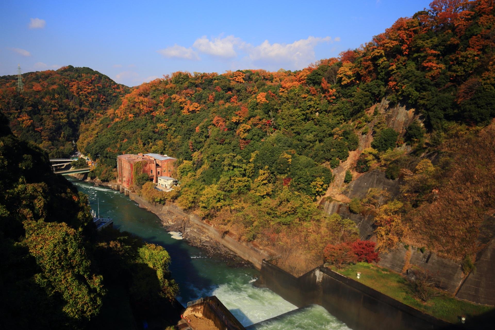 天ヶ瀬ダムと宇治川を彩る多彩な秋の山々