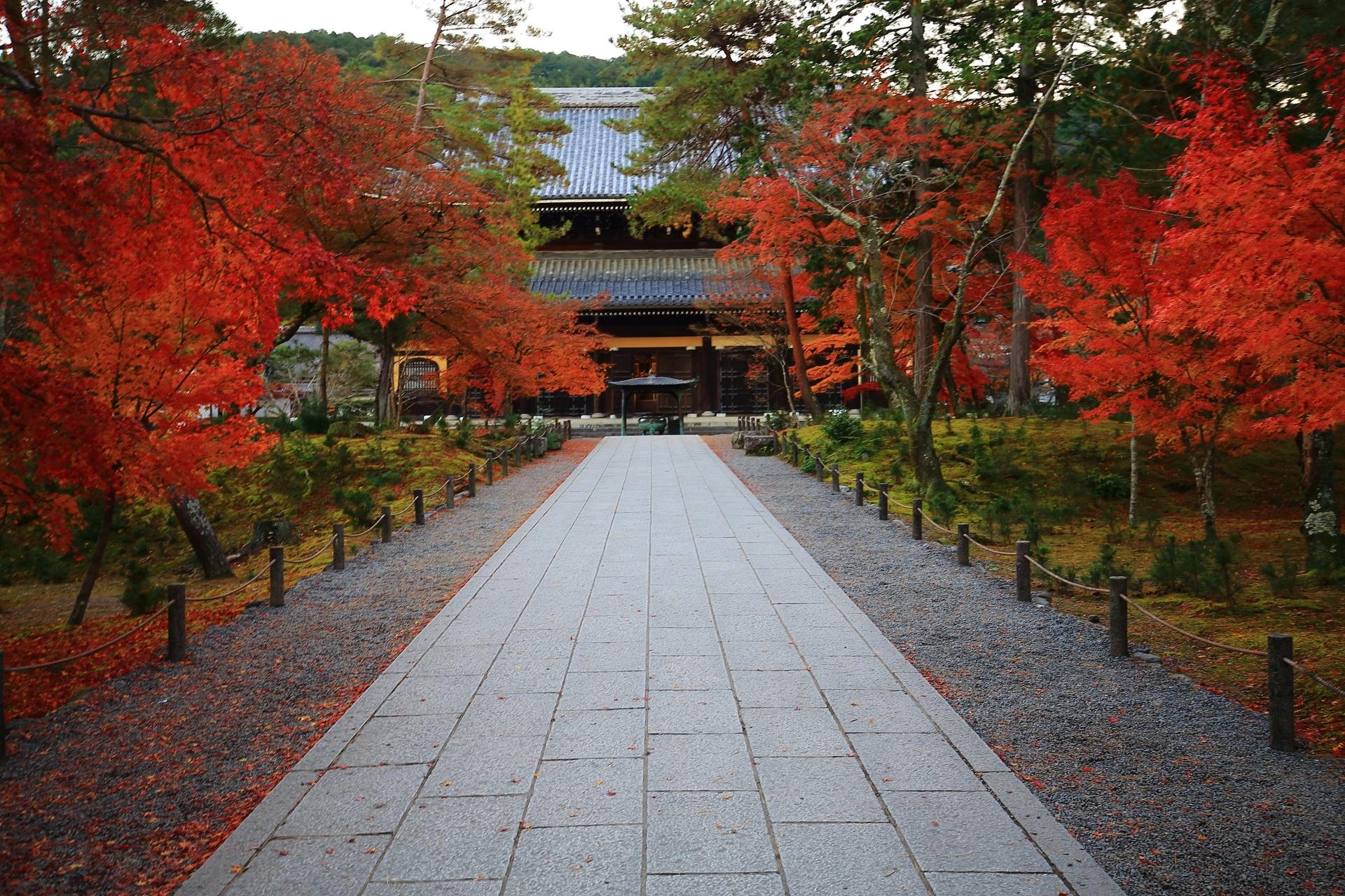 独特の色合いをした法堂へと続く紅葉にそまる石畳の参道