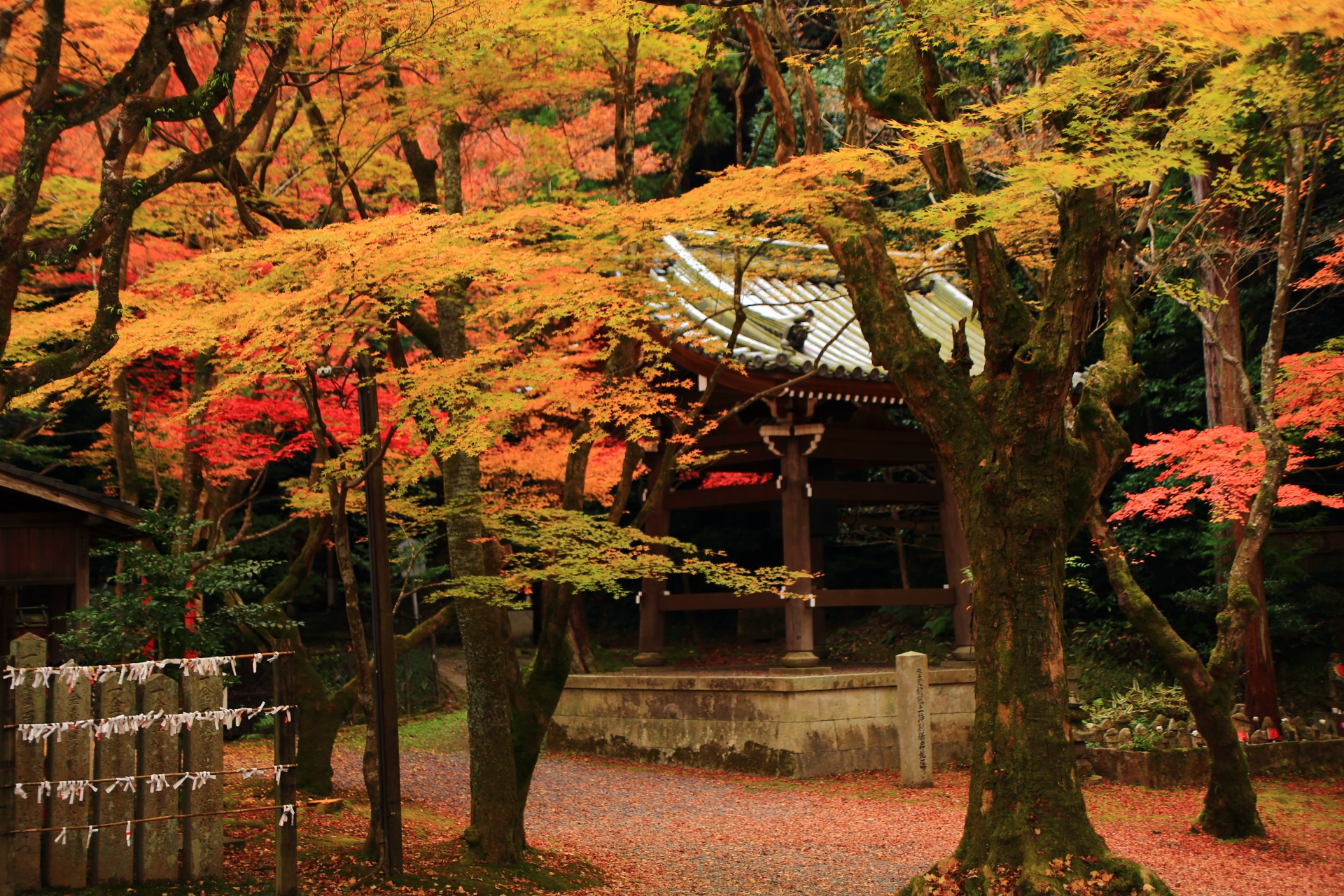 柔らかな秋の空間に佇む鐘楼