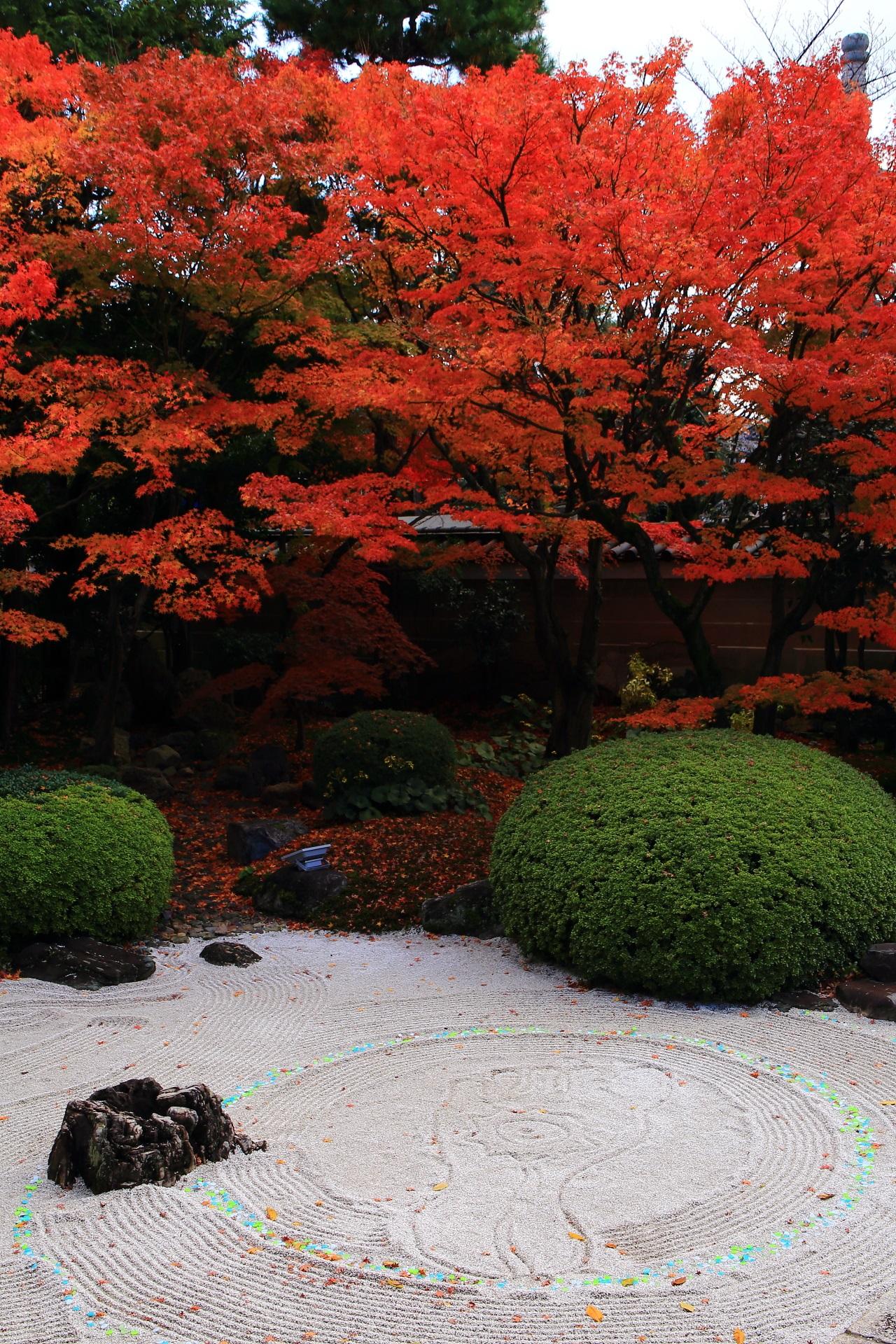紅葉につつまれる仏足が描かれる妙顕寺の四海唱導の庭
