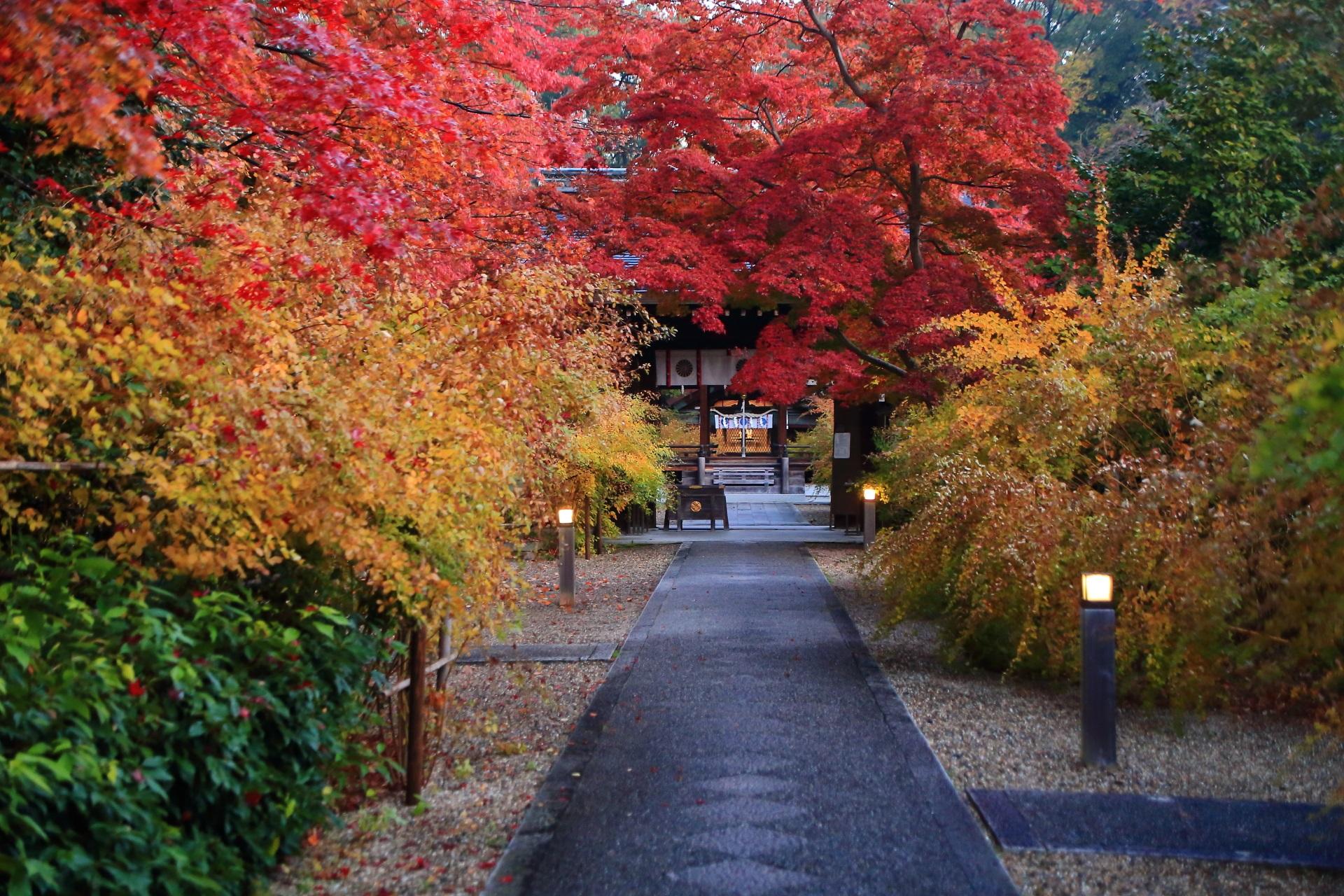 梨木神社の独り占めの紅葉の参道