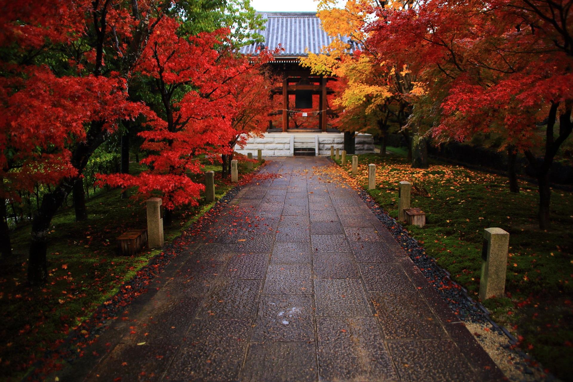 佇む鐘楼を彩る智積院の赤色や黄色の鮮やかな紅葉