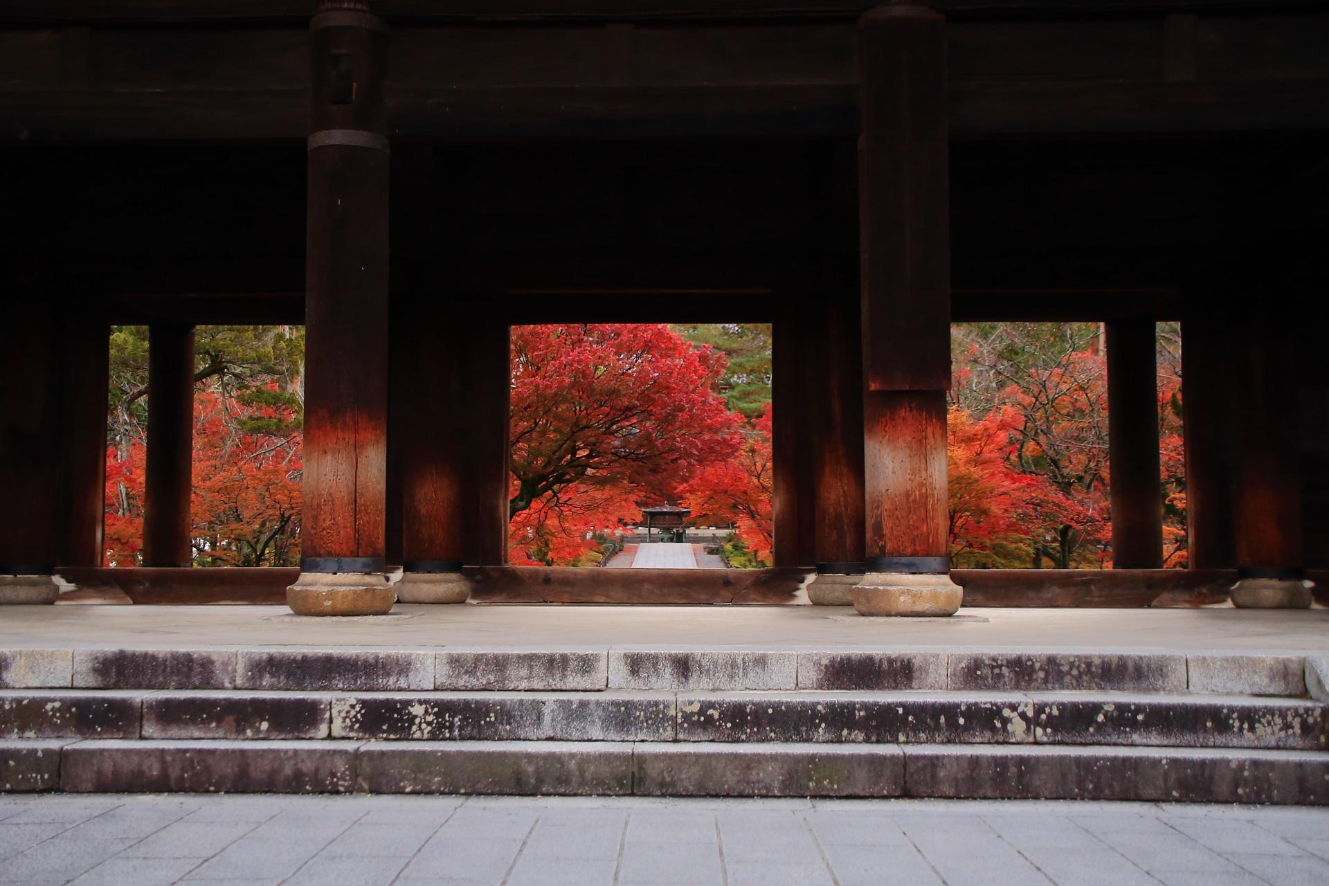 三門の下から見える参道と溢れる鮮やかな紅葉
