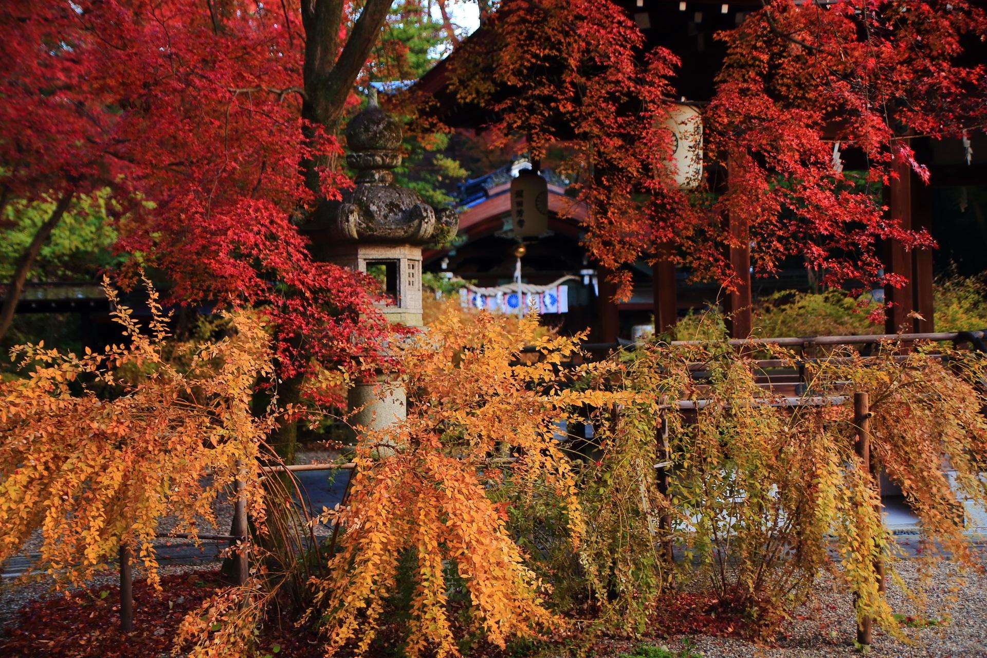 拝殿や燈籠を彩る萩の紅葉