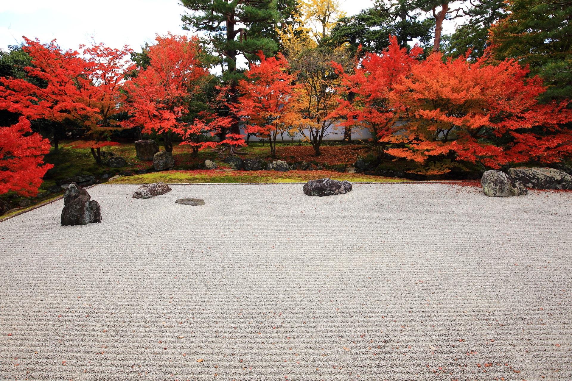 開山堂庭園の白砂に映える鮮やかな紅葉