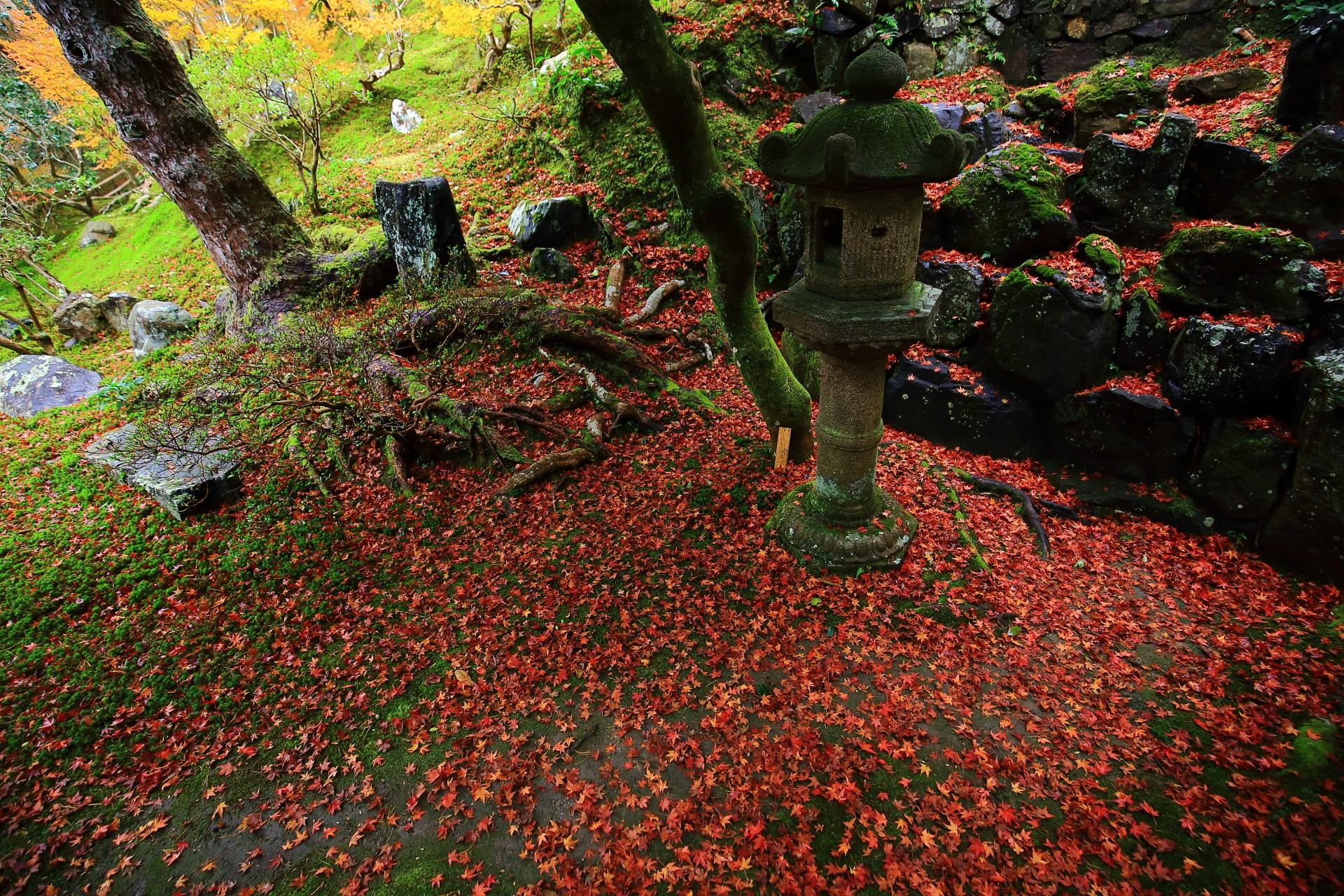 溢れる散紅葉の中に佇む燈籠