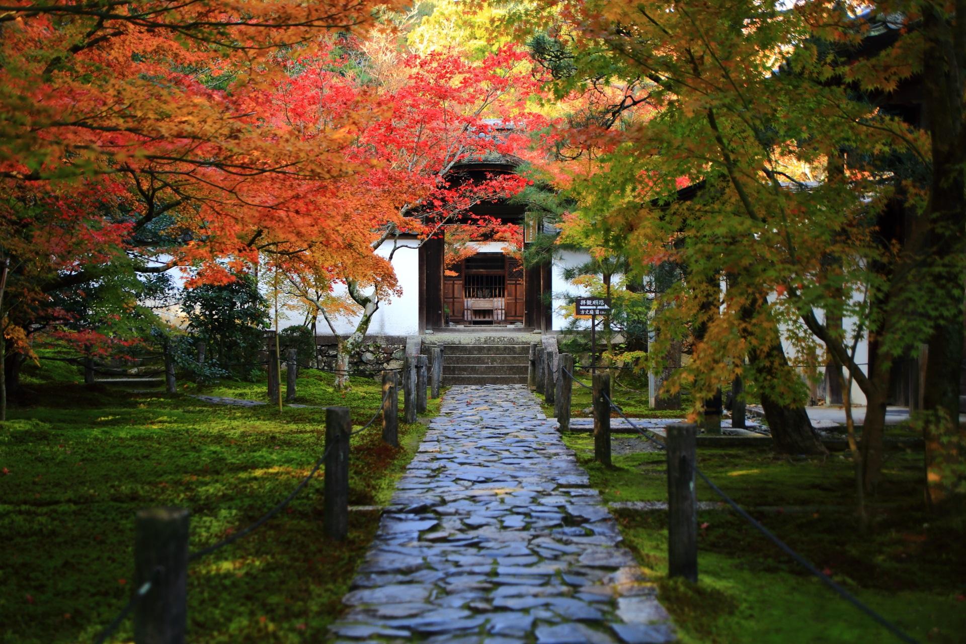 中門の奥に見える本堂と風情ある紅葉