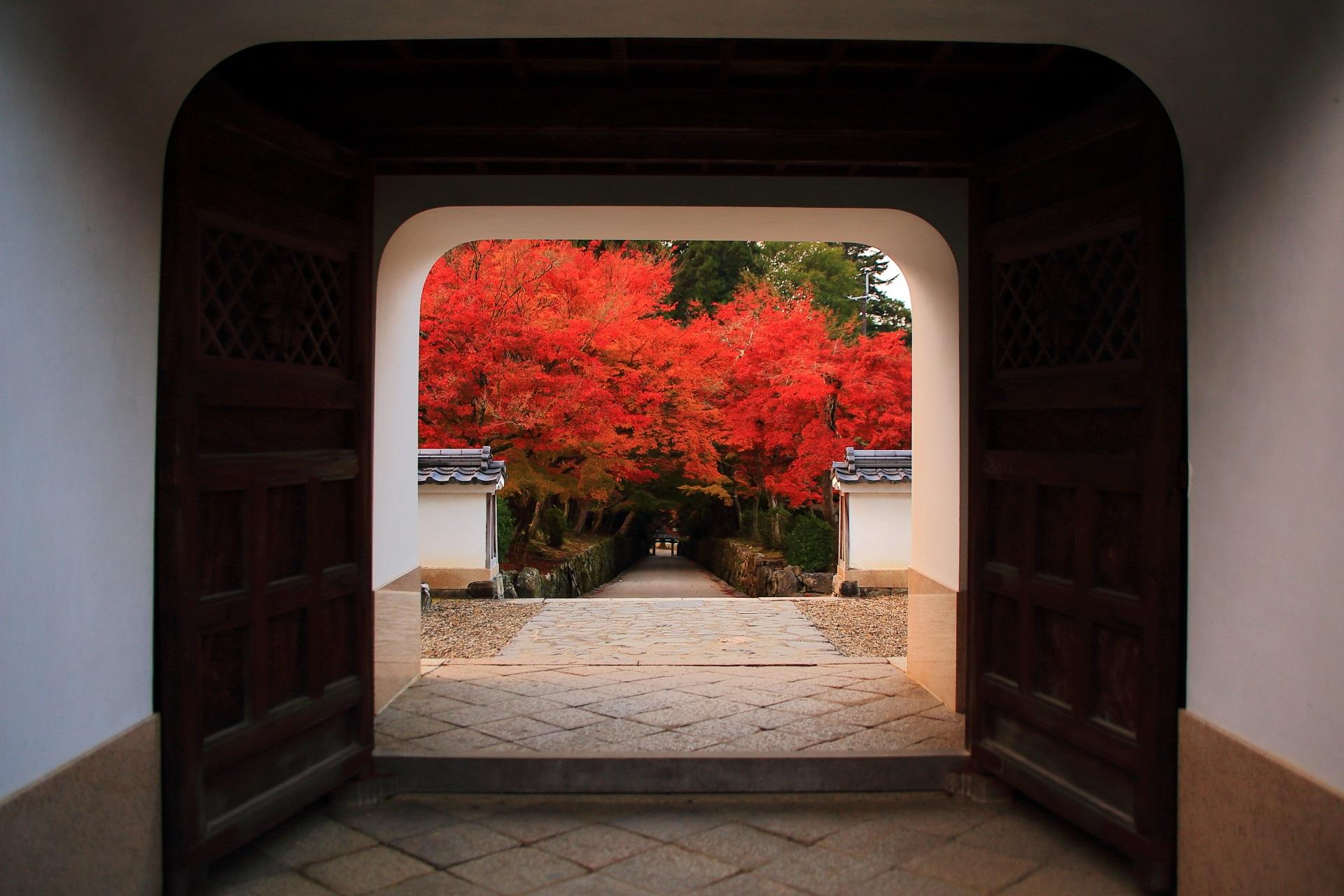 琴坂の素晴らしい紅葉や秋の情景